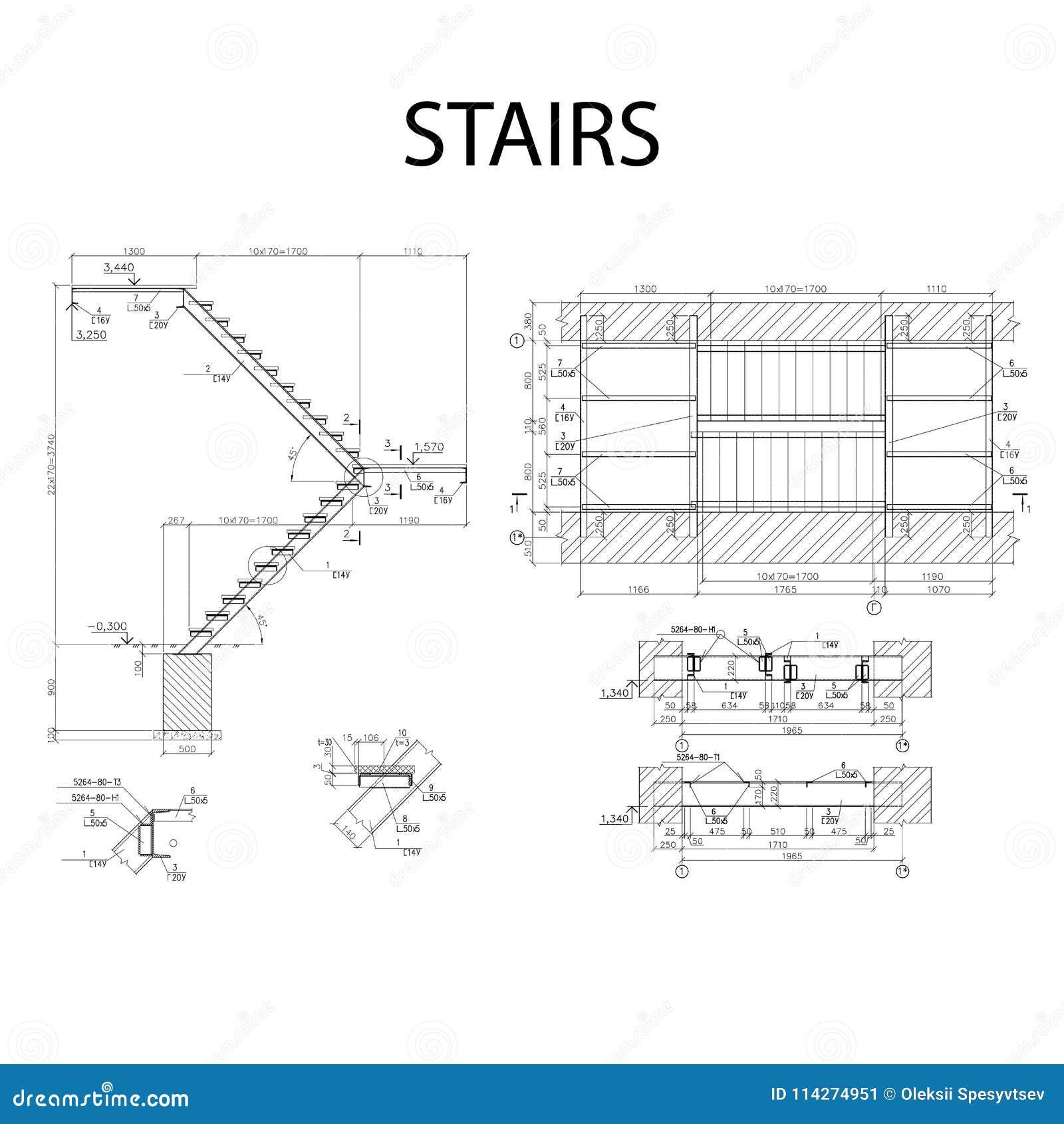 Gedetailleerd architecturaal plan van treden, bouwnijverheidsvector