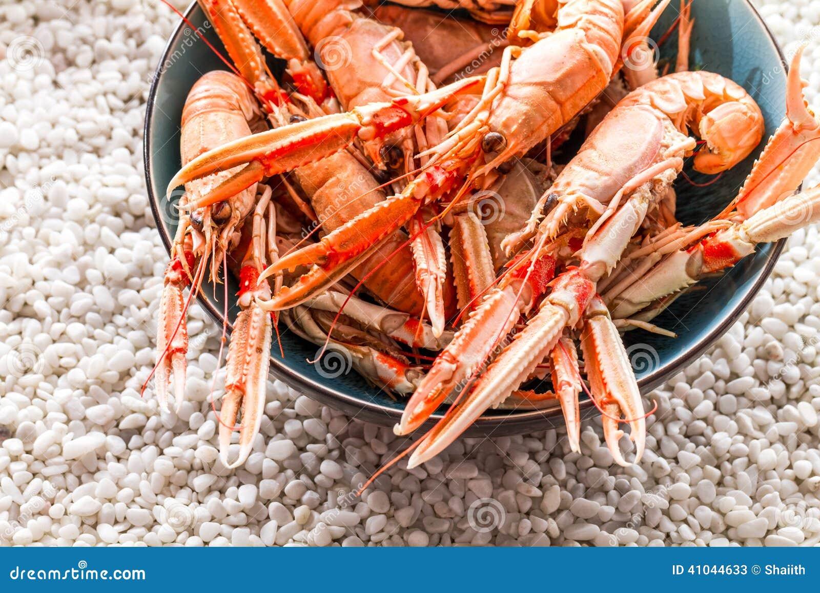 Gediende zeevruchten