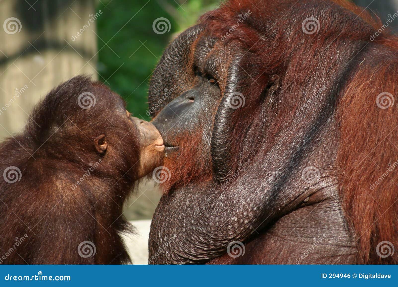 Geef papa een kus