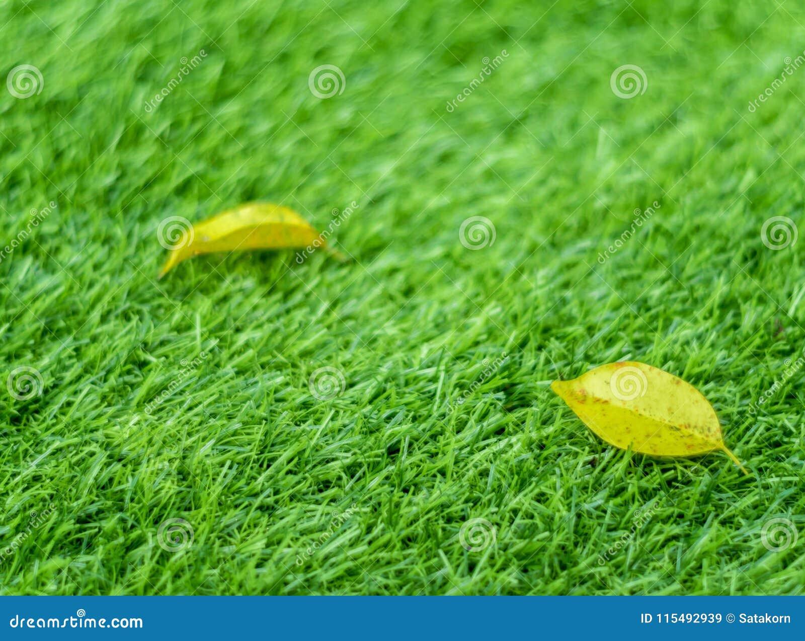 Geel dalingsblad op het kunstmatige gras door ondiepe diepte van fie