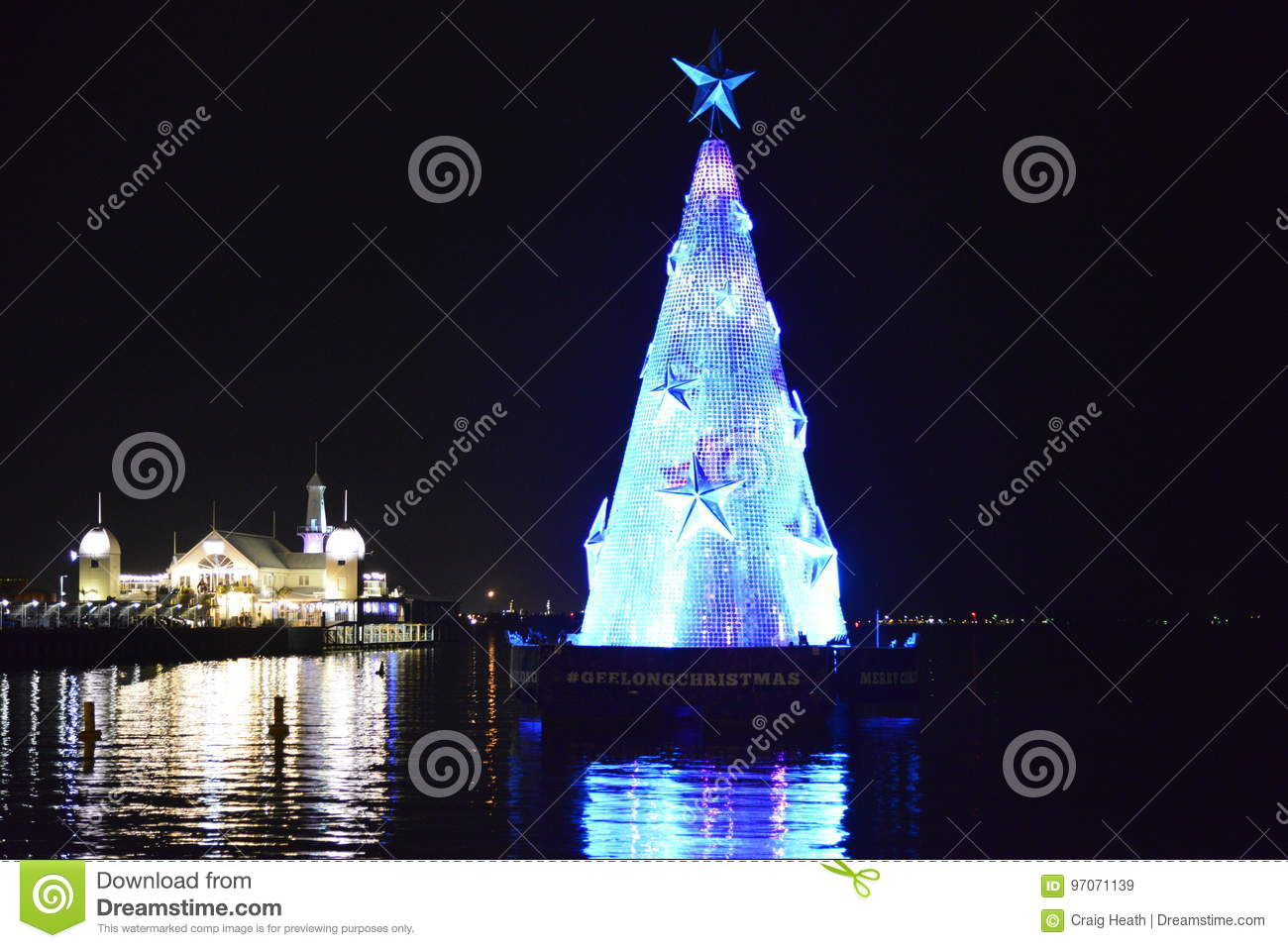 Christmas Tree At Xmas Time Geelong Editorial Stock Image - Image of ...