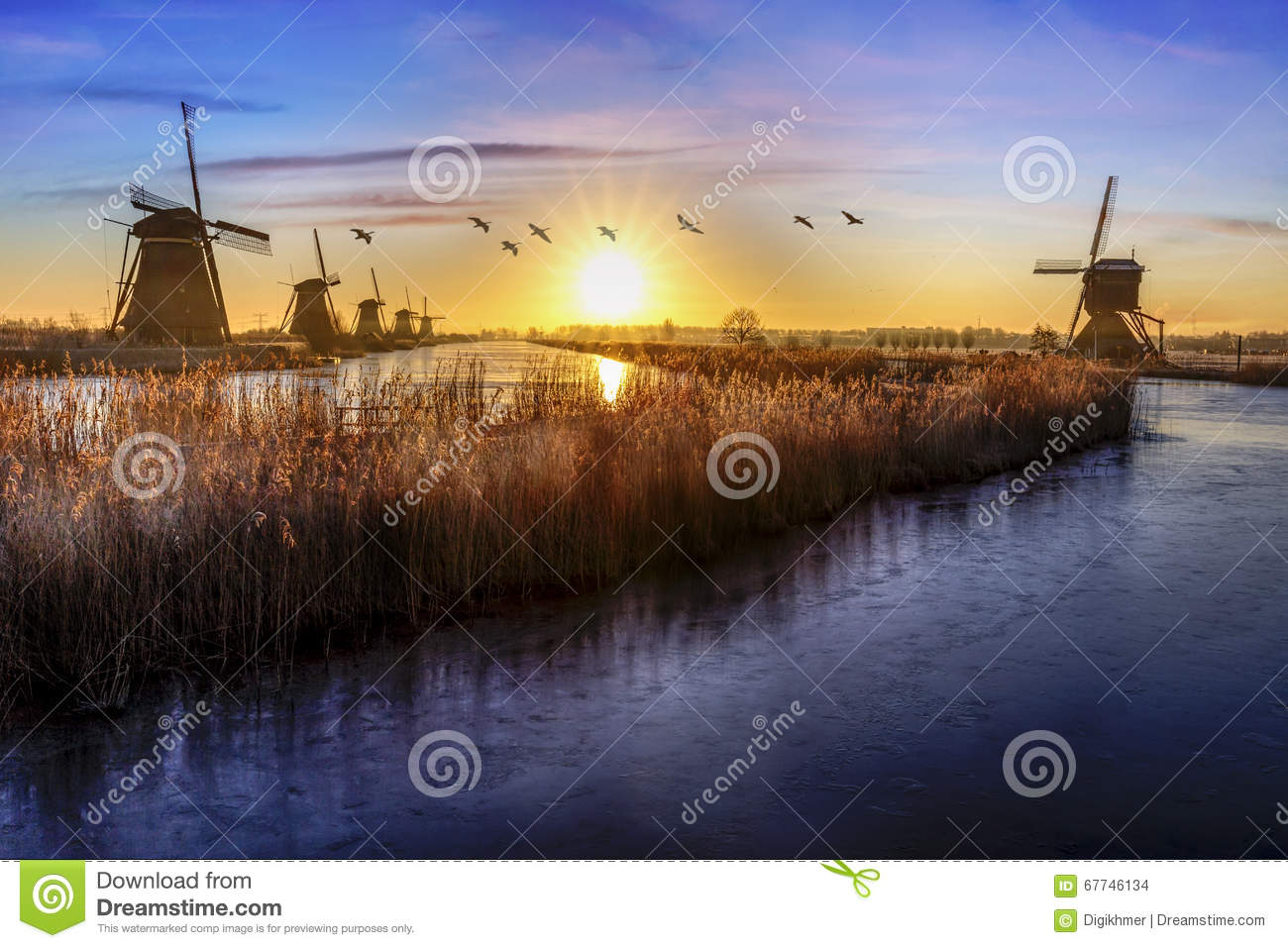 Geese flying over sunrise on the frozen windmills alignment