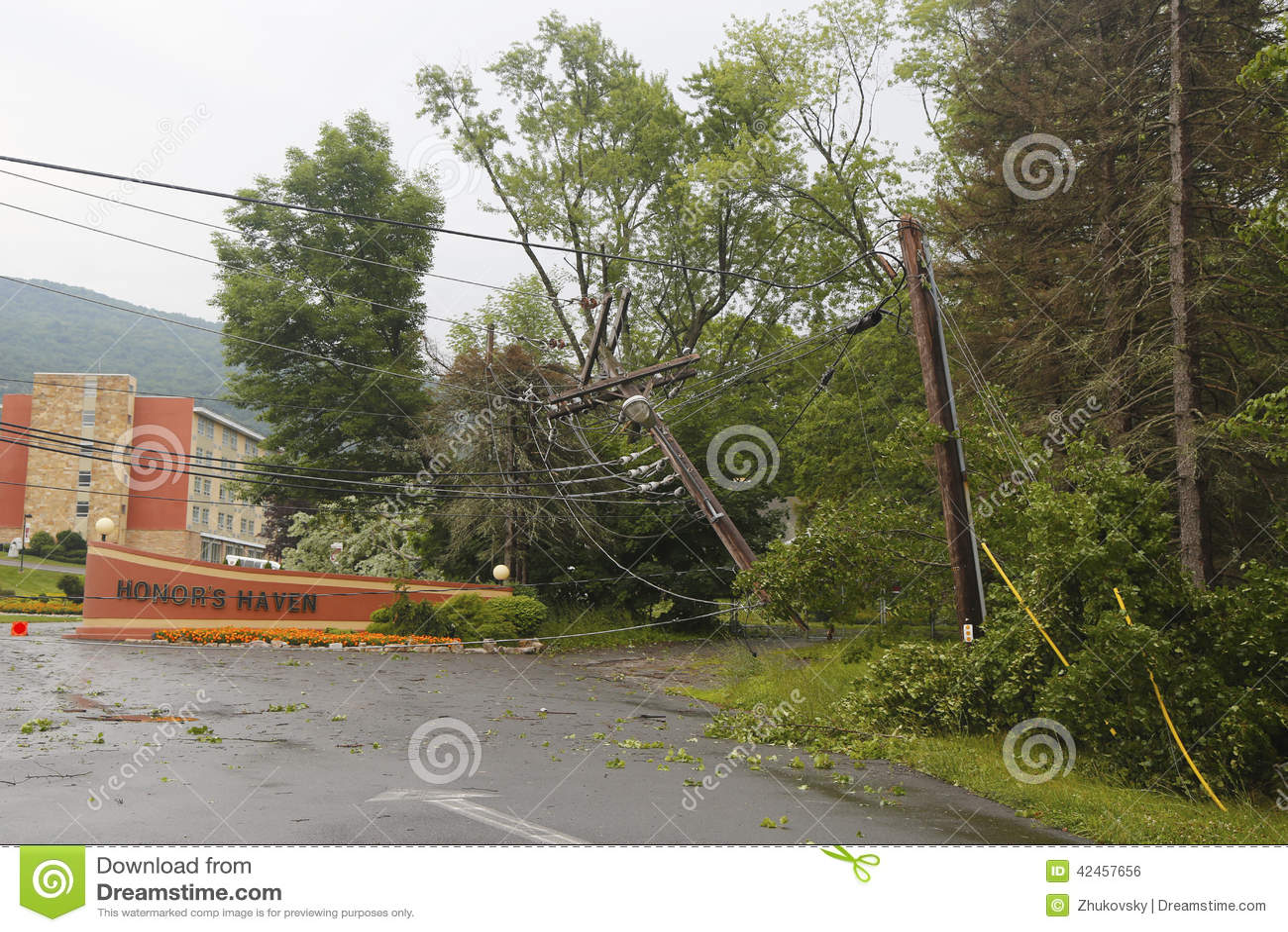 Gefallener Baum schädigte Stromleitungen in der Zeit nach Unwetter und Tornado in Ulster County, New York