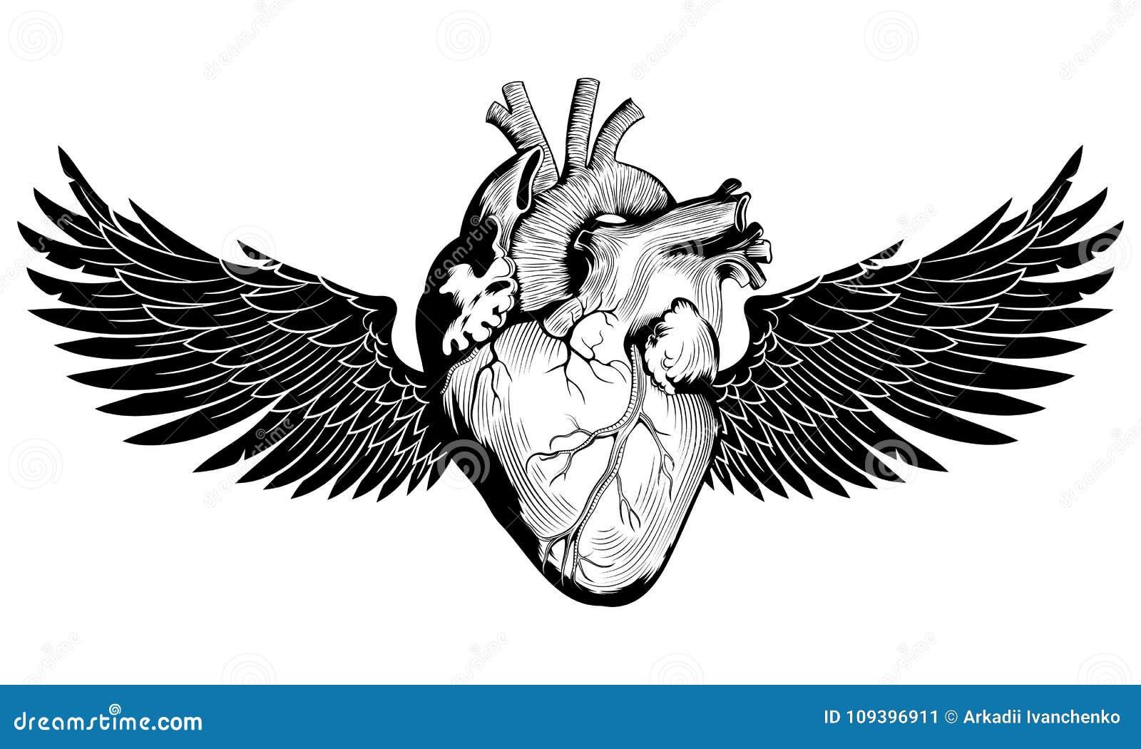 Geflügeltes menschliches Herz