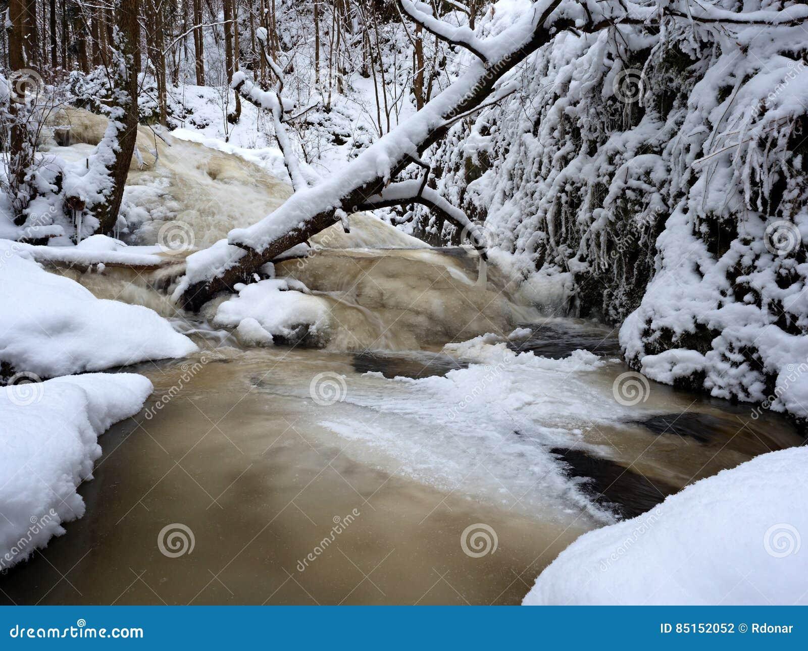 Gefrorene Kaskade, Wasserfall, Eisige Zweige Und Eisige Flusssteine ...