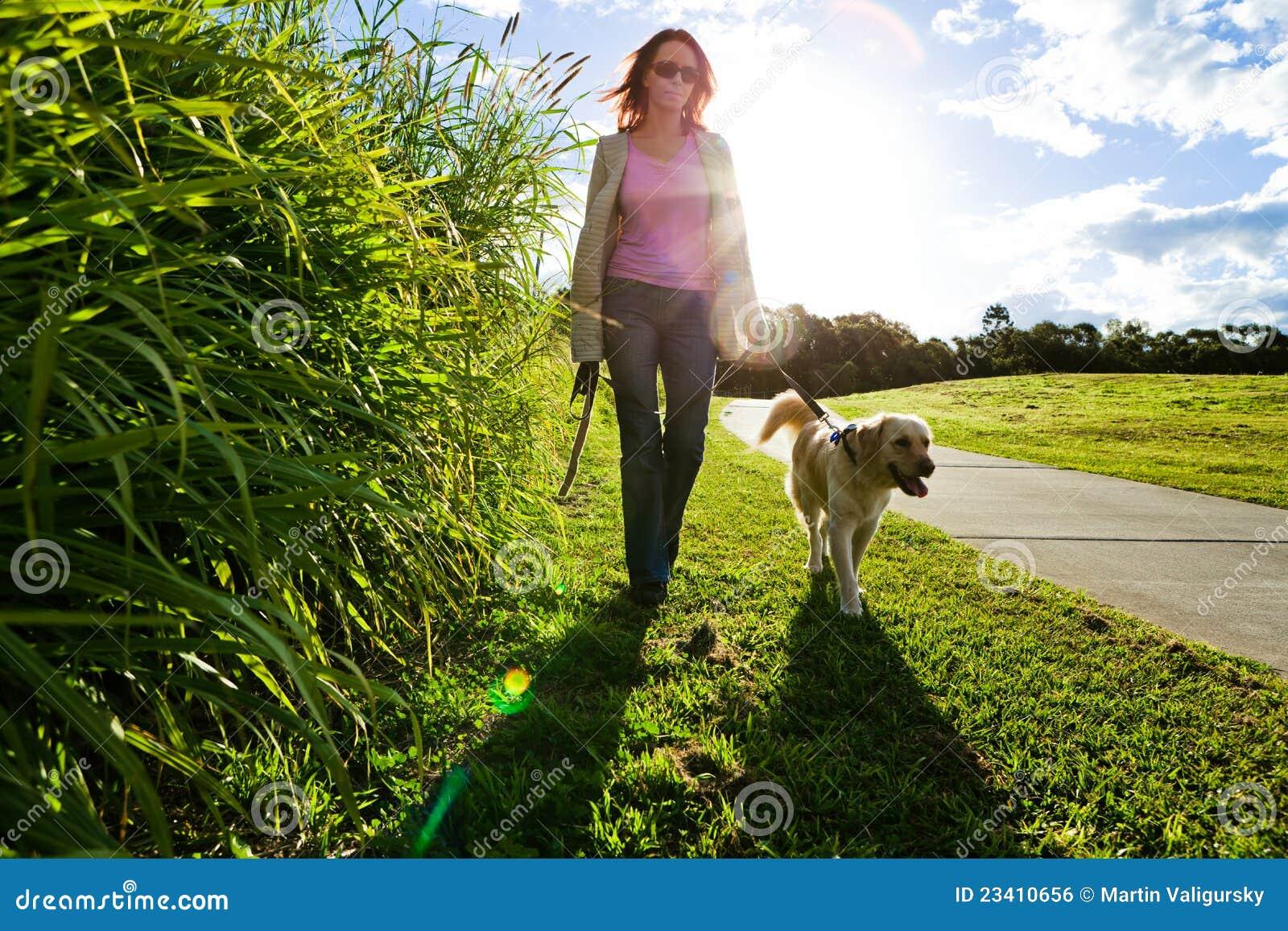 Gehen der jungen Frau und des goldenen Apportierhunds
