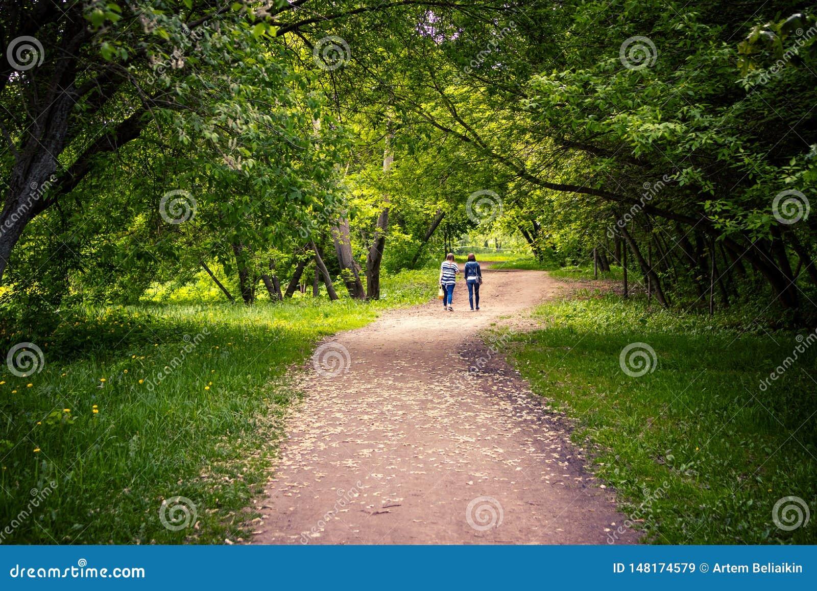 Gehen mit zwei jungen Frauen im Freien im szenischen Park zur Frühlingszeit