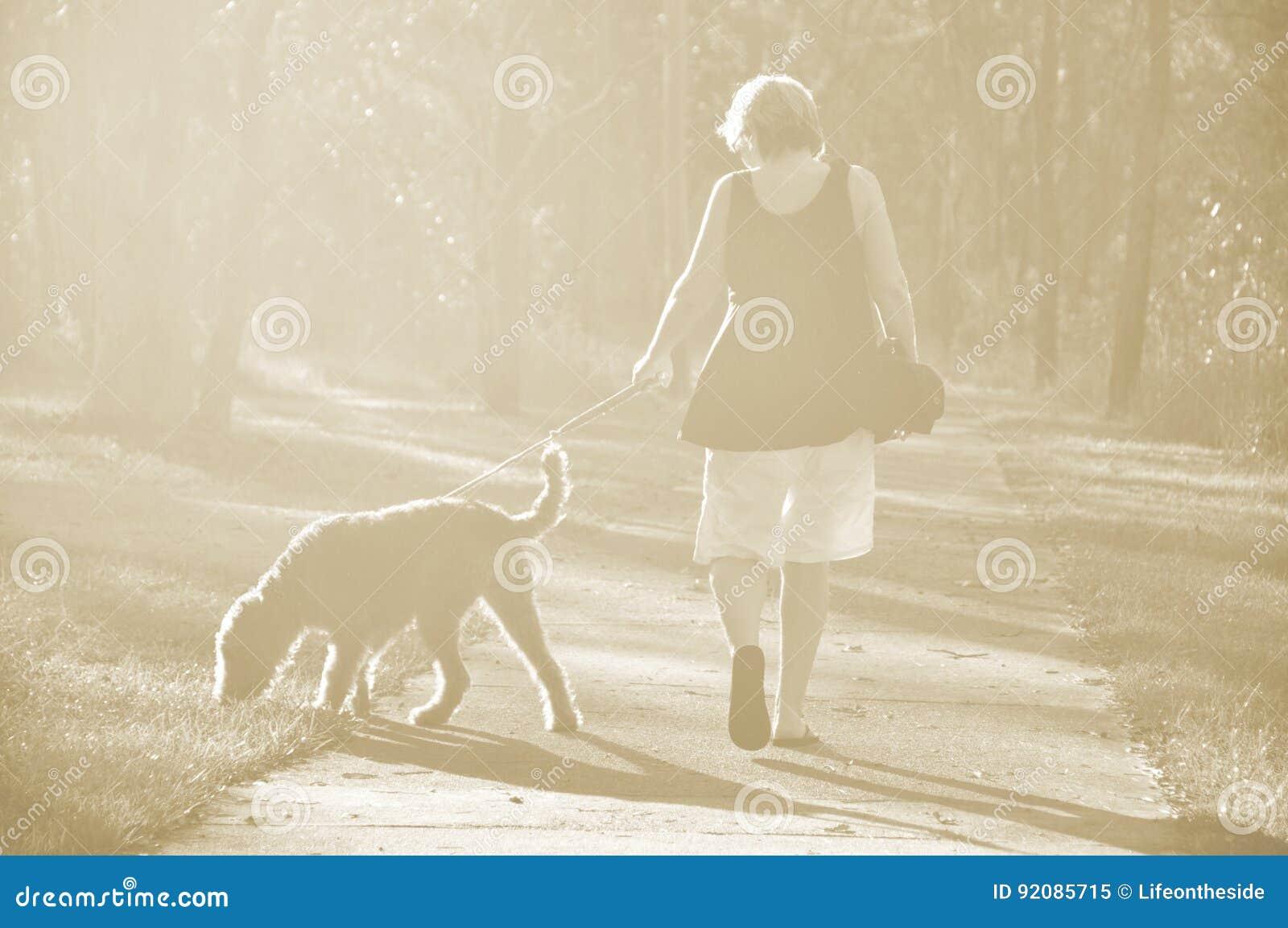 Gehender Hund der träumerischen weichen Sepialichthintergrund-Frau im Holz