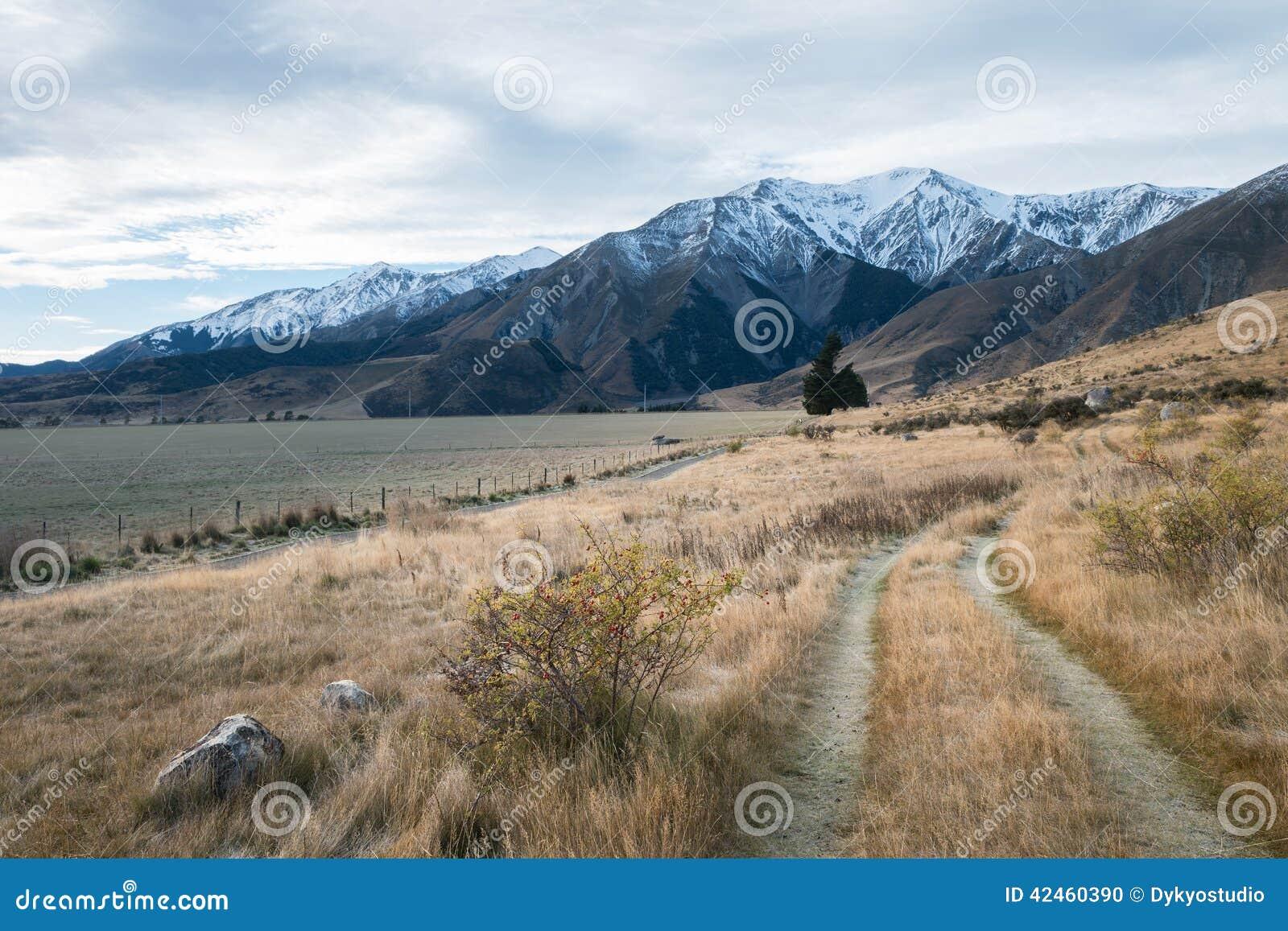 Gehweg im Schloss-Hügel am bewölkten Tag, Neuseeland