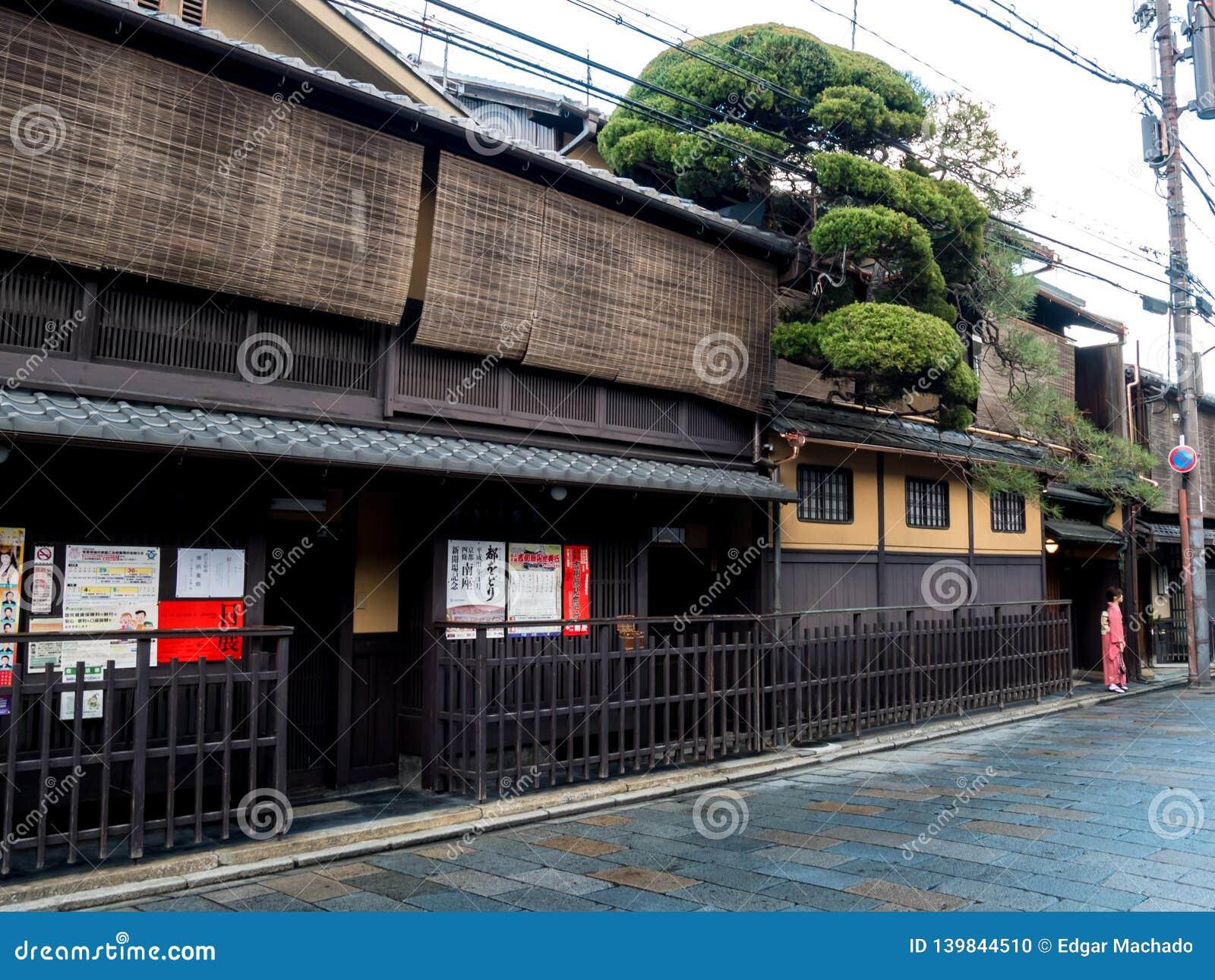 Gejsza pozuje pod pięknym drzewem w retro japońskiego stylu ulicie przy Gion oddziałem