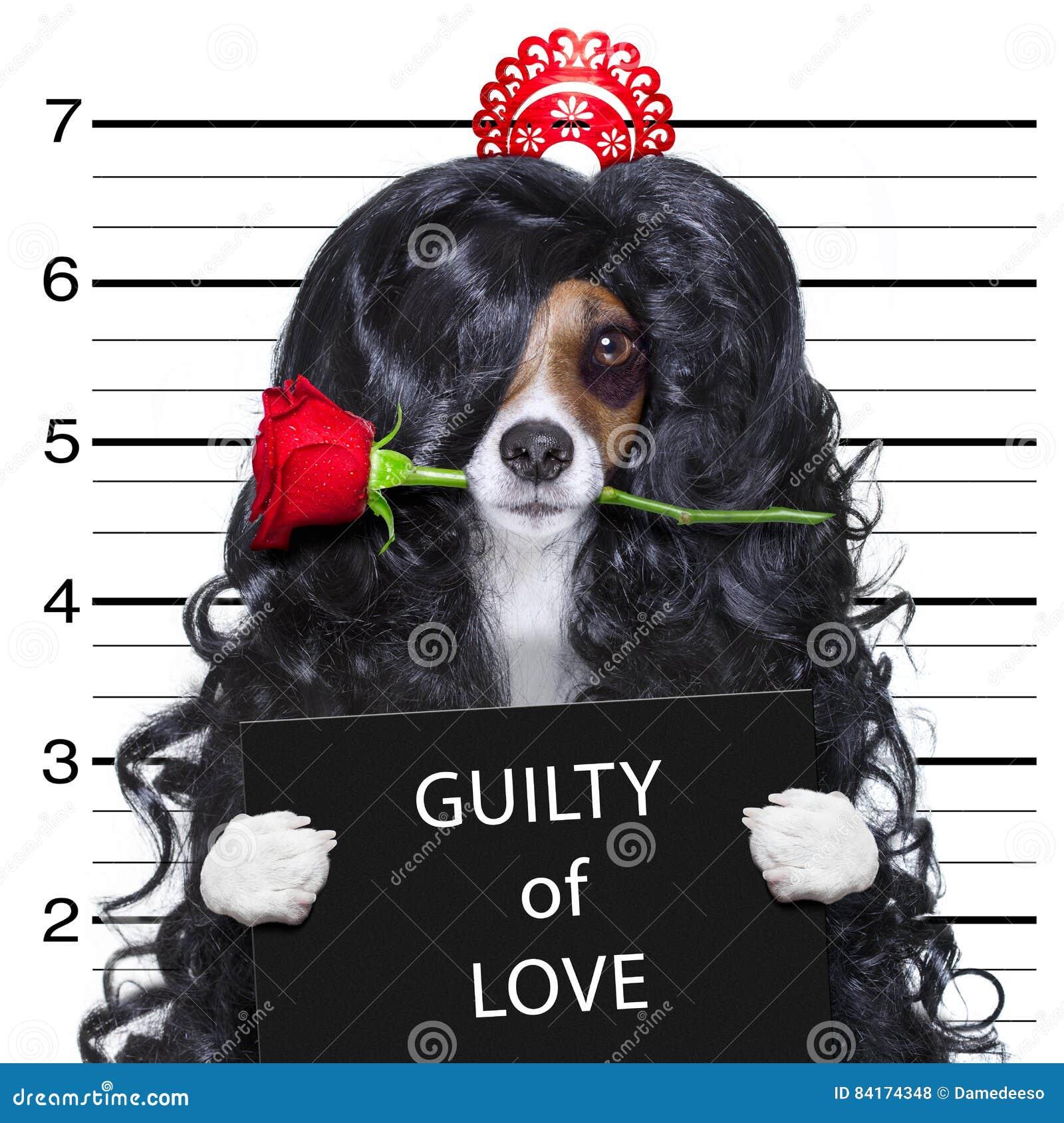 Gek bij de hond van liefdevalentijnskaarten mugshot