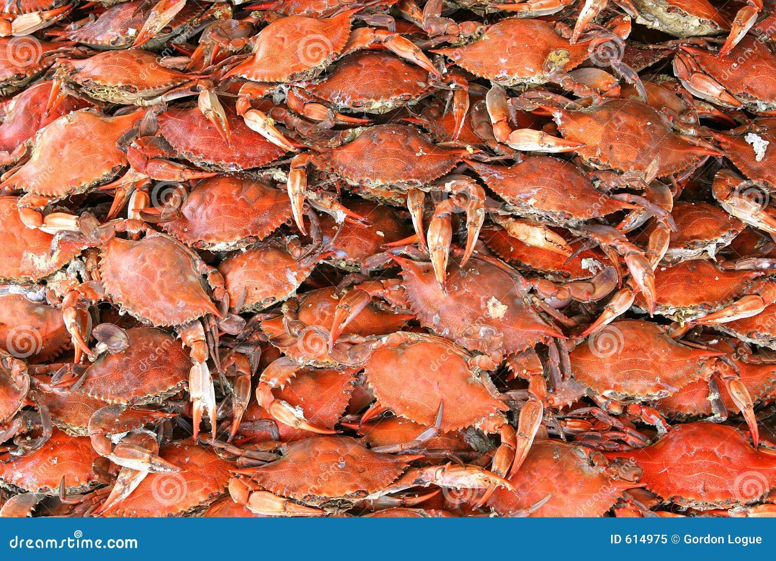 Gekookte Krabben