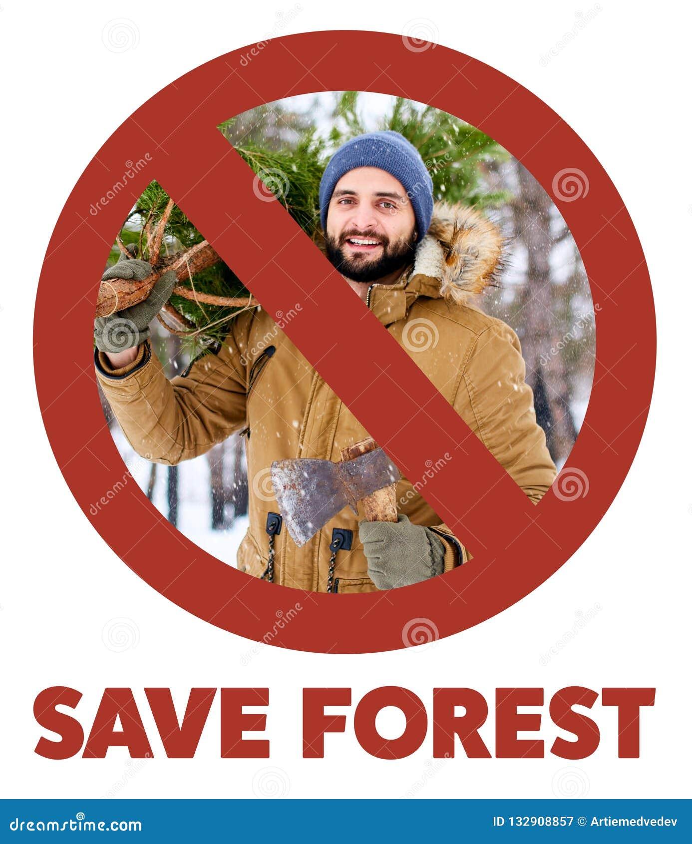 Gekreuztes heraus rotes Zeichen auf dem bärtigen Holzfällermann, der frisch verringerten Weihnachtstannenbaum und -axt im Holz tr
