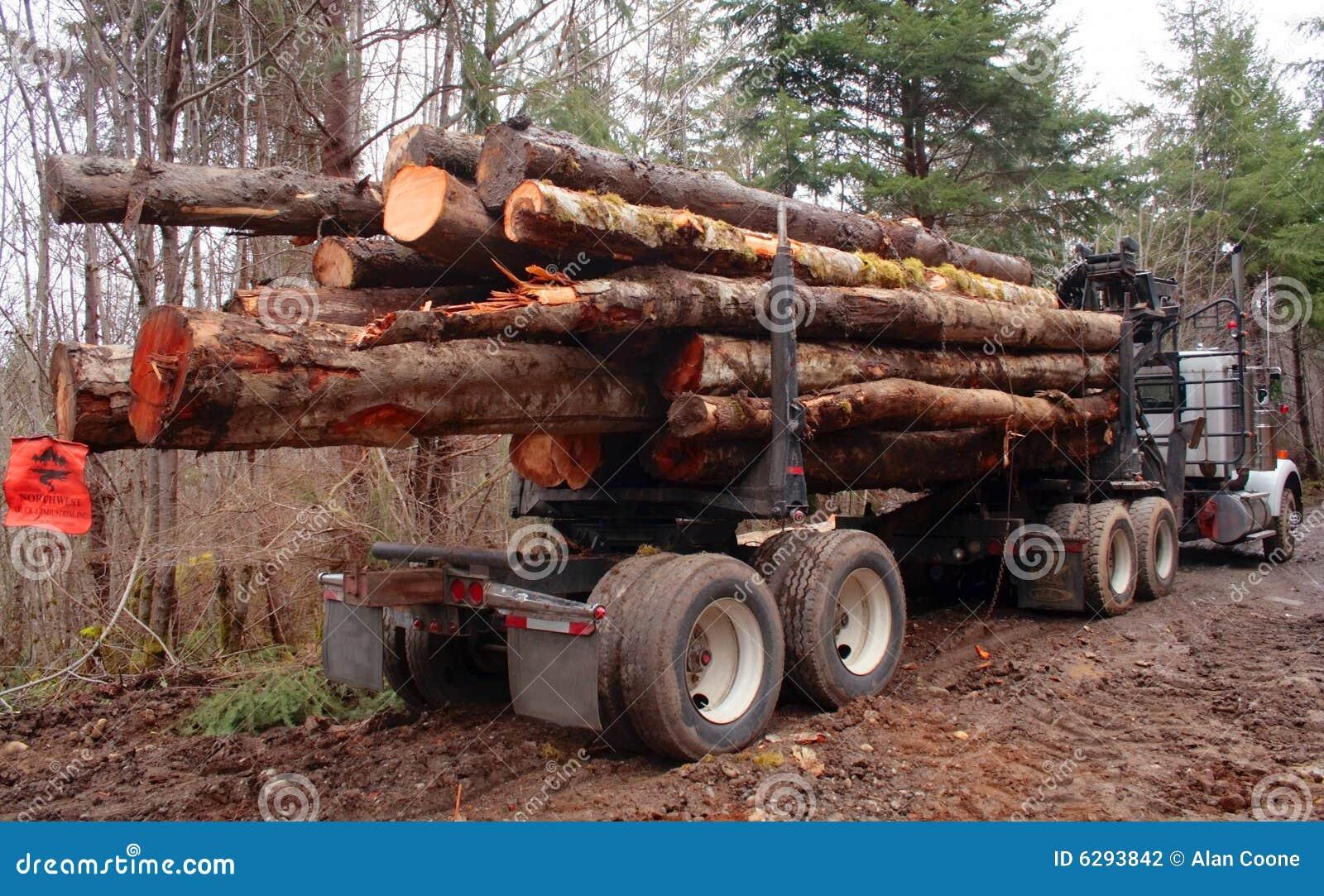 Geladen de Vrachtwagen van het registreren