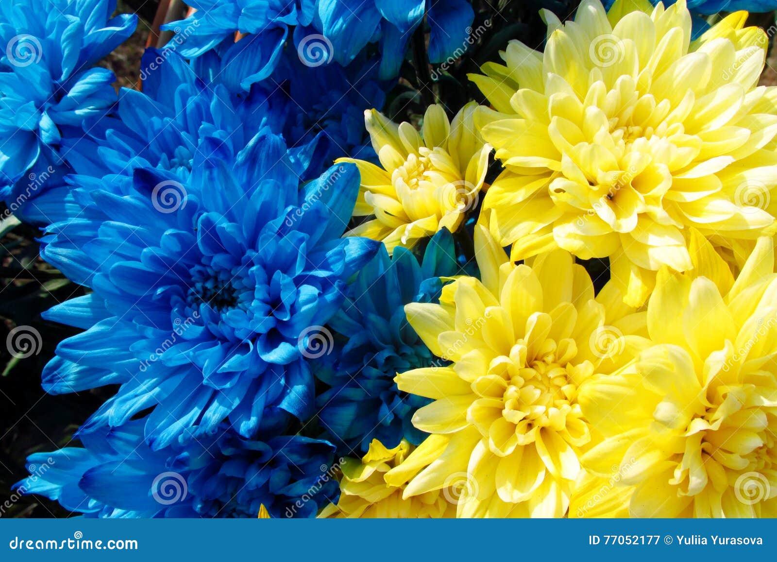 Erfreut Blumen Lebensmittelfarbe Zeitgenössisch - Druckbare ...