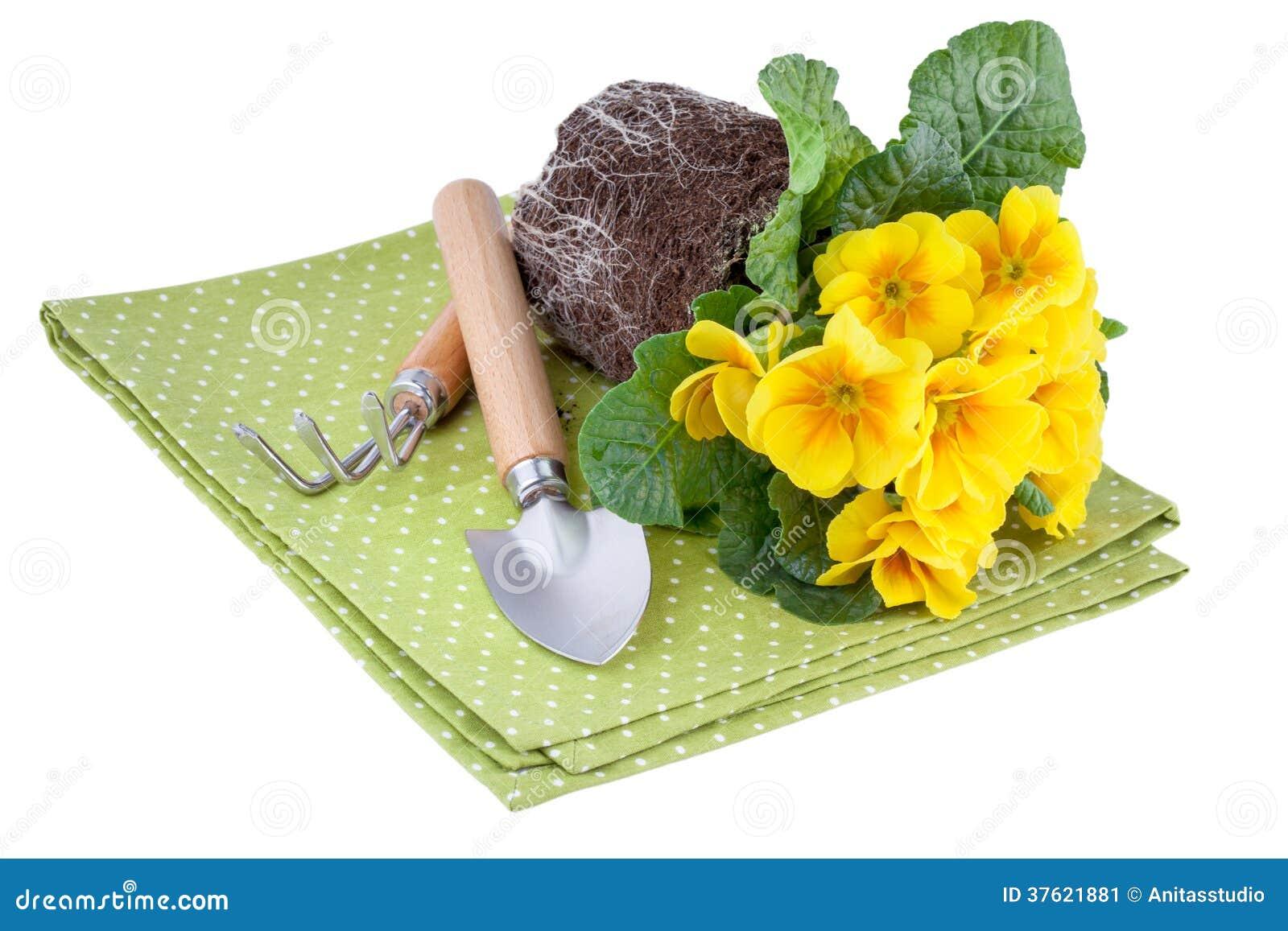 gelbe blumen mit garten werkzeugen stockbild bild 37621881. Black Bedroom Furniture Sets. Home Design Ideas