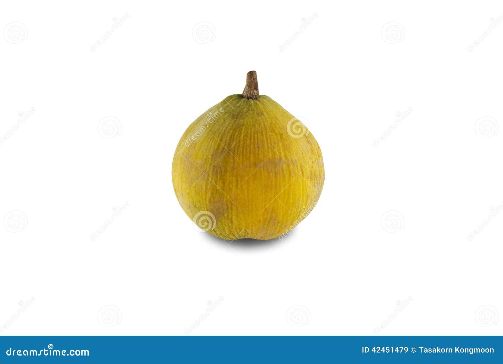 Gelbe santol Frucht lokalisiert auf weißem Hintergrund