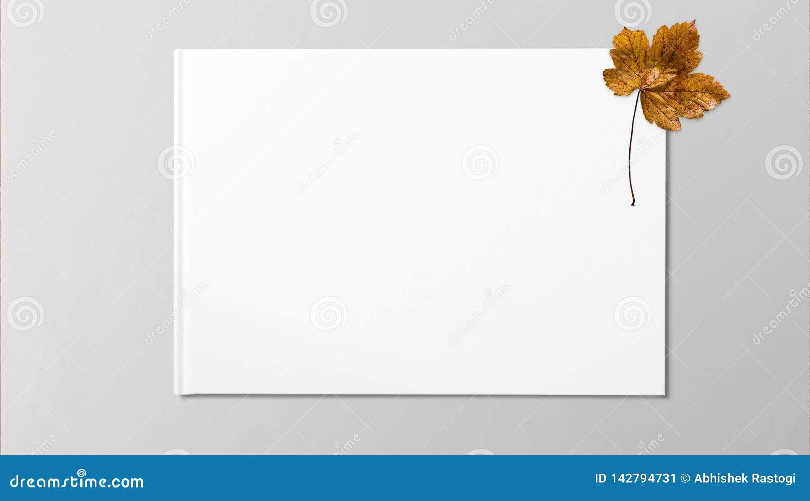 Gelbes getrocknetes Ahornblatt auf weißem Hintergrund
