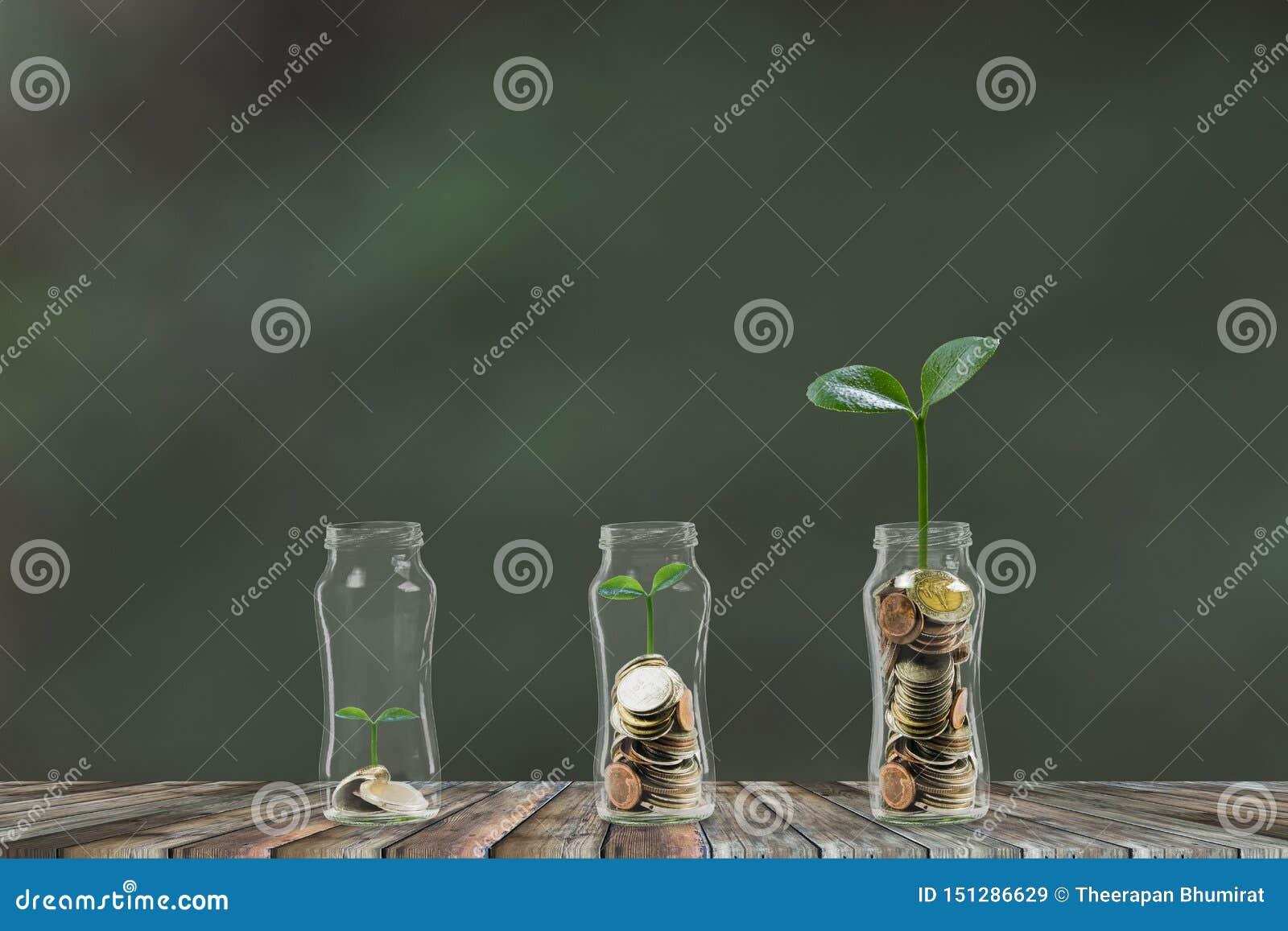 Geld, das Schritt für Schritt, ein Stapel Münzen wachsen in Glasgefäß 3 wächst Rettungsgeld, Geldanlagekonzept