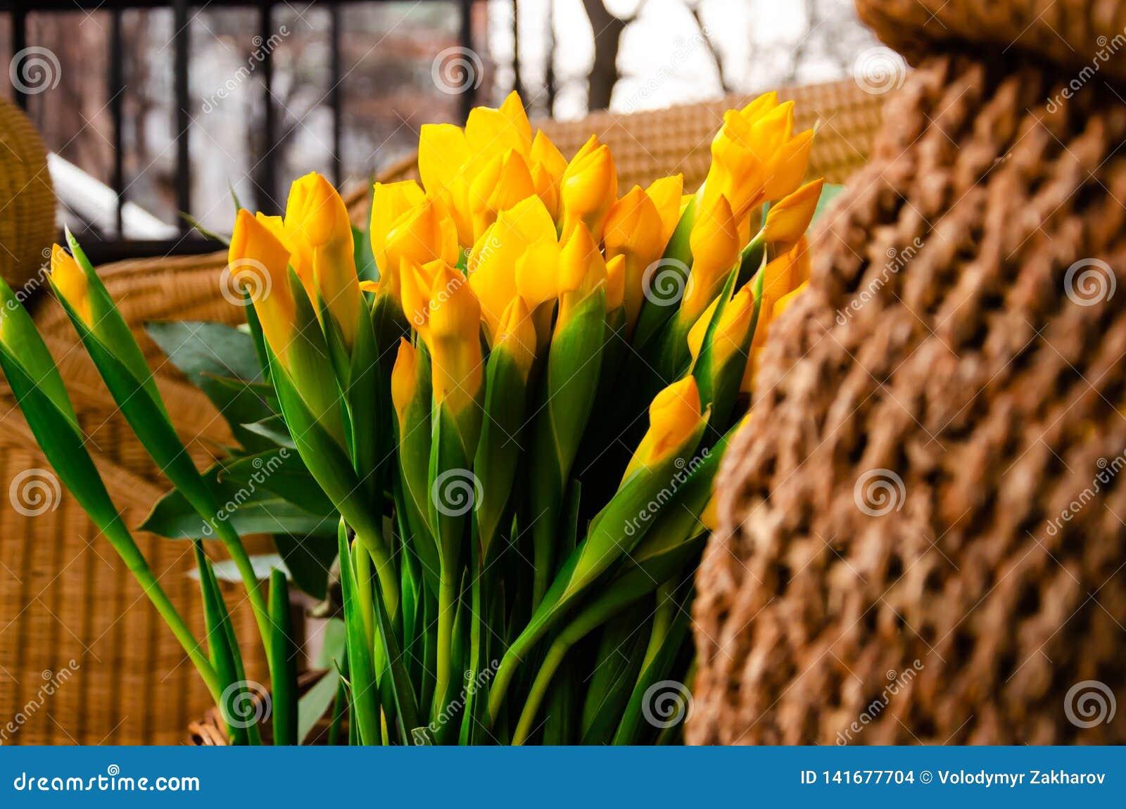 Gele bloemen voor de vakantie van de lente