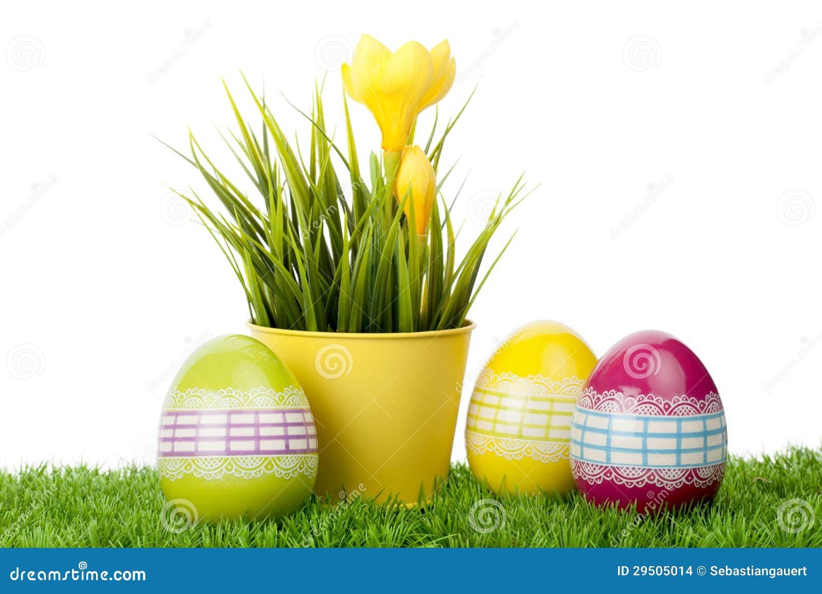 Gele krokusbloem met verfraaide eieren