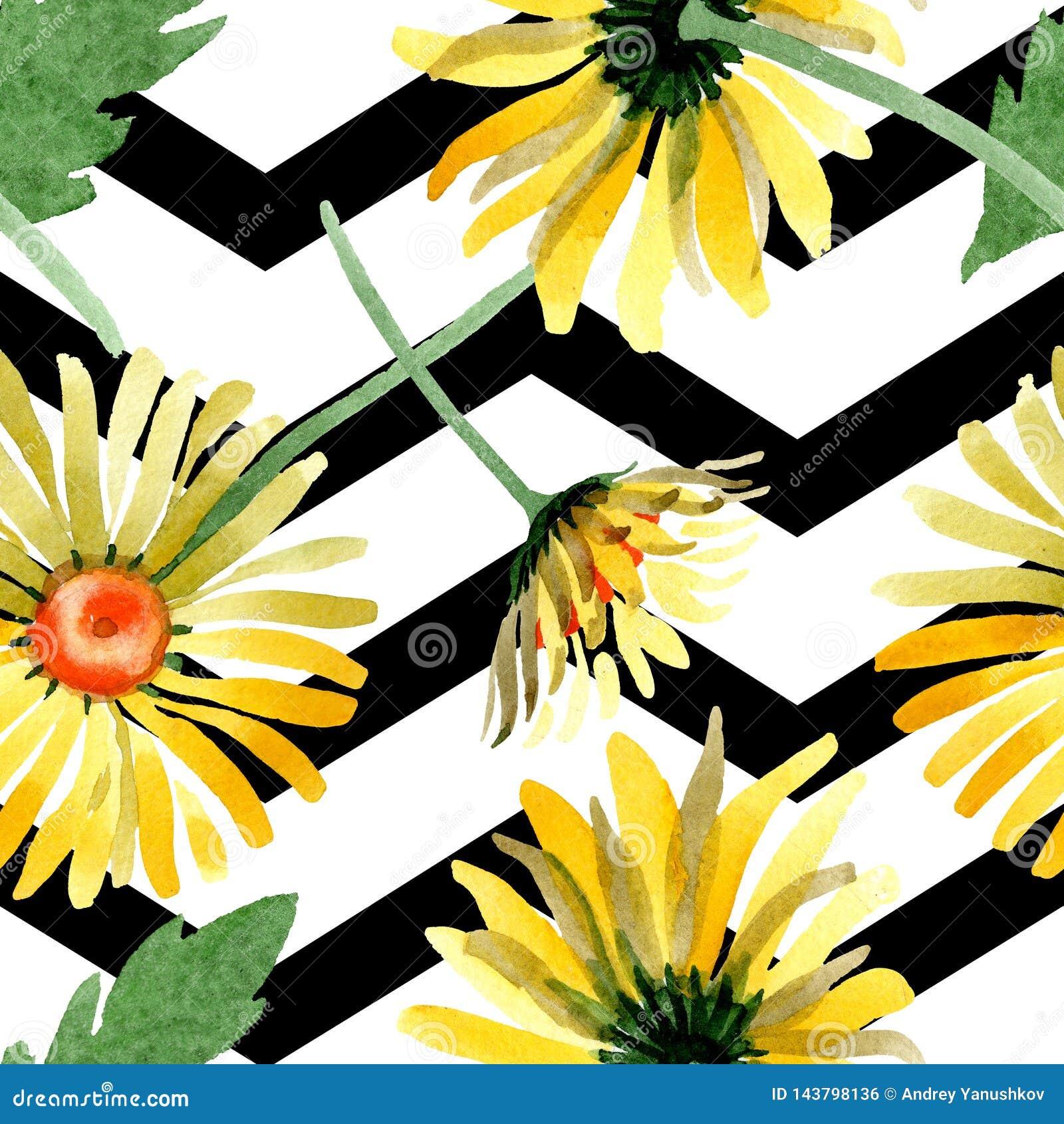 Gele madeliefje bloemen botanische bloemen Waterverf achtergrondillustratiereeks Naadloos patroon als achtergrond