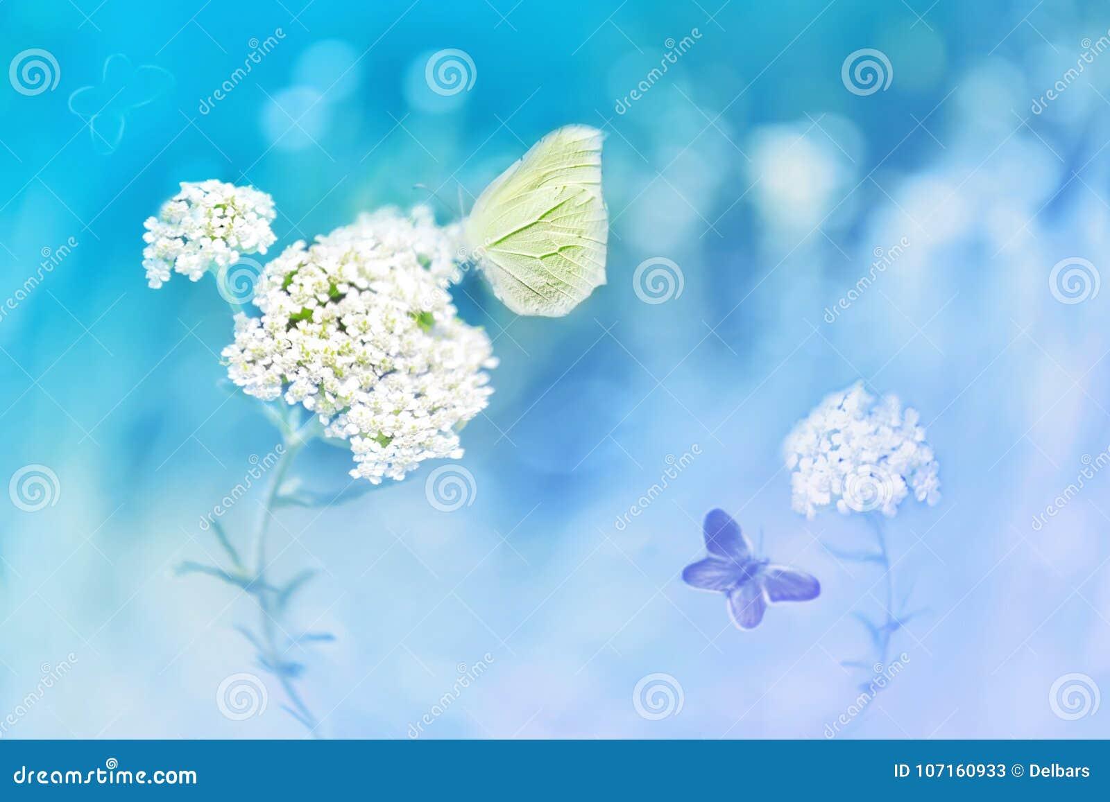 Gele vlinders op de witte bloem tegen een achtergrond van wilde aard in blauwe tonen Artistiek beeld