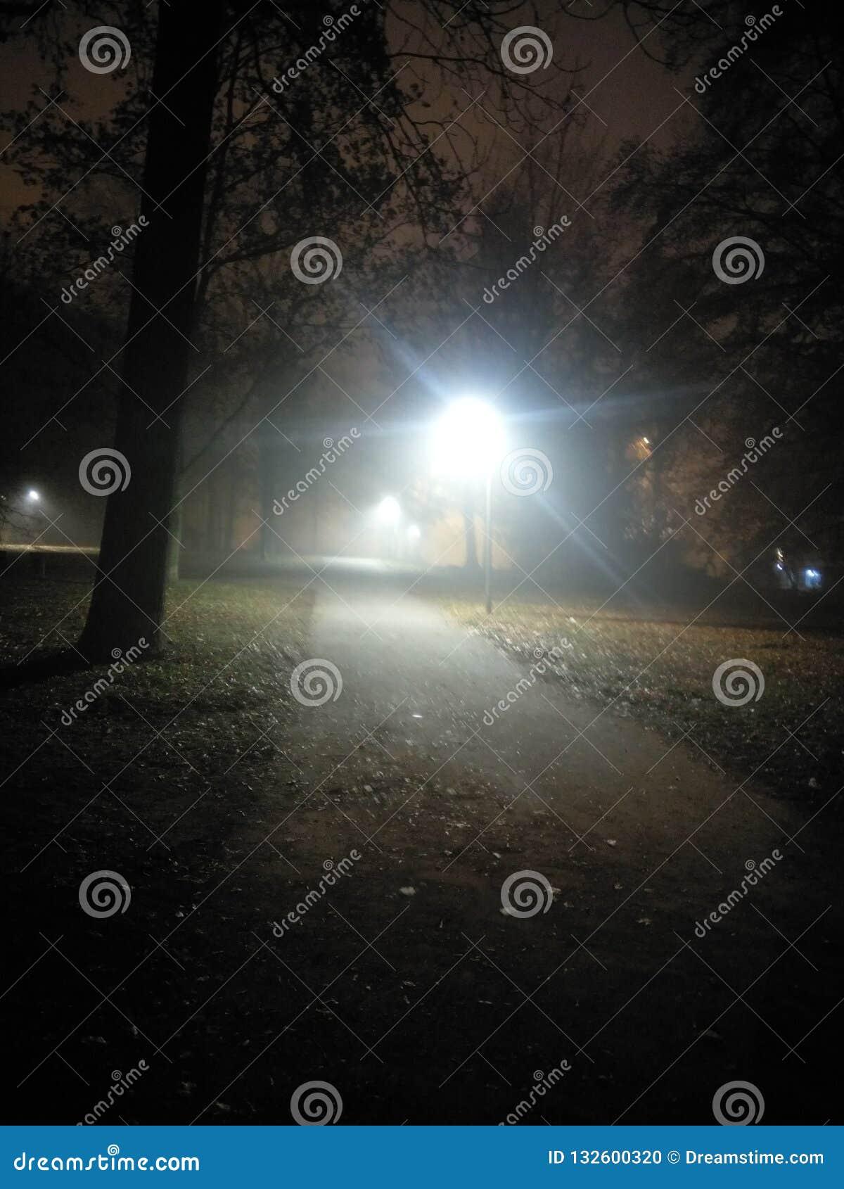 Gelegentlicher Nachtpics