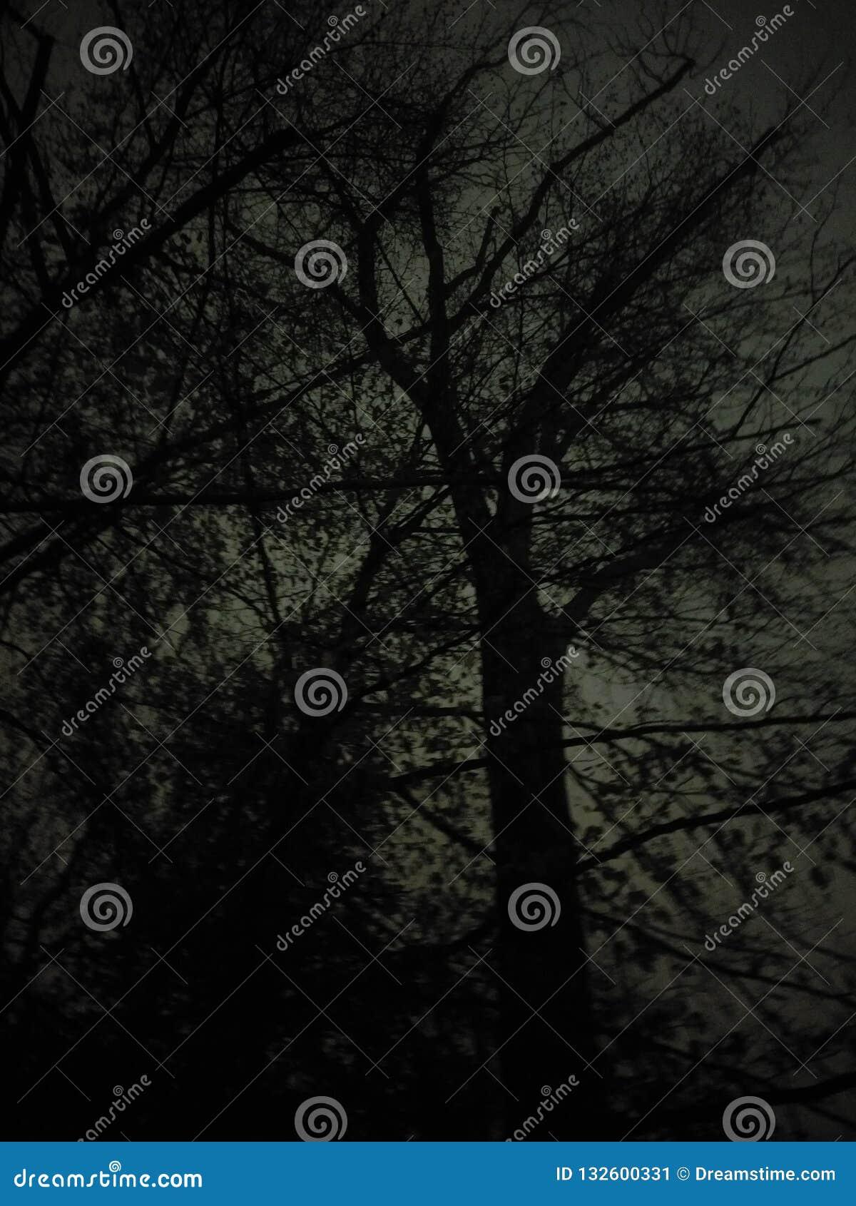 Gelegentlicher Nachtpics, nightstreets