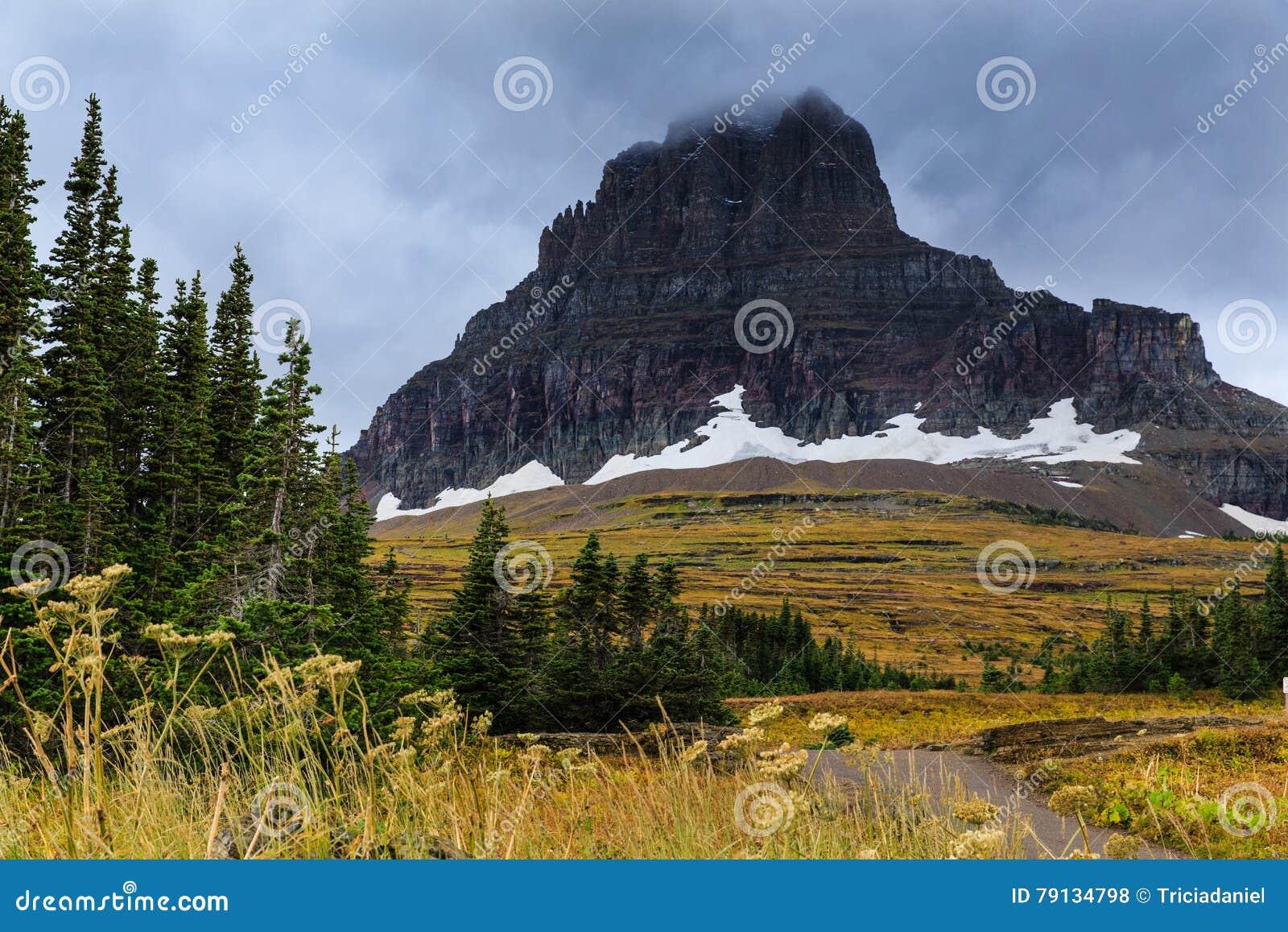 Geleira no parque nacional de geleira