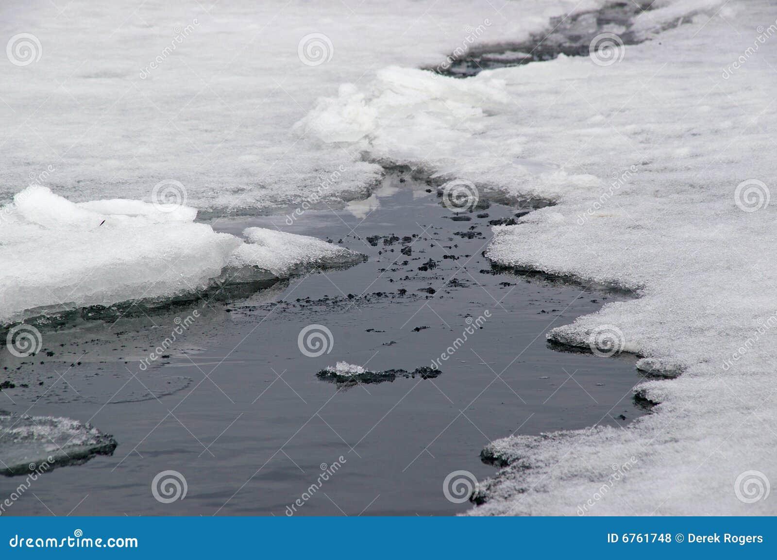 Gelo marinho antárctico