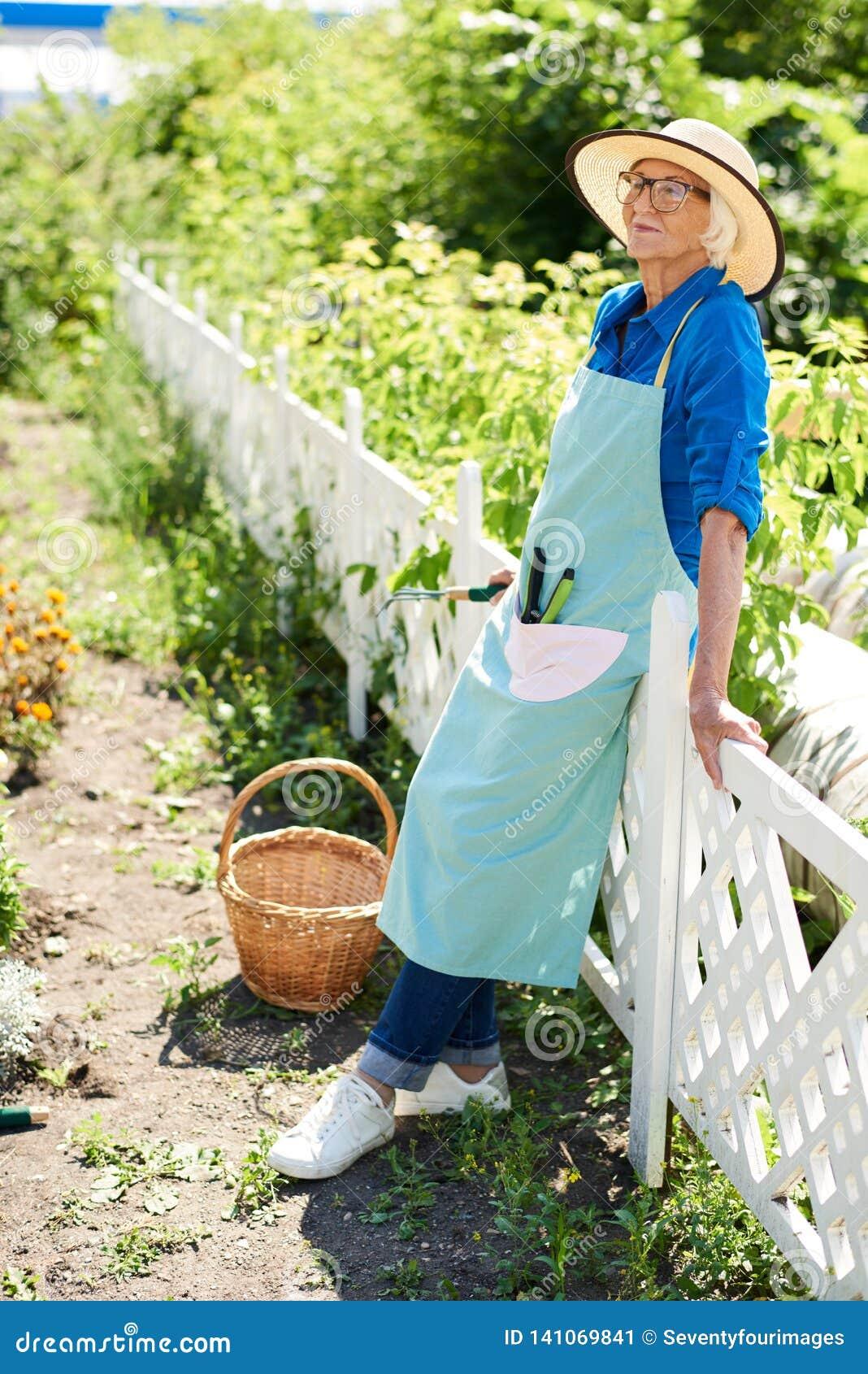 Gelukkige Hogere Tuinman Posing door Aanplanting