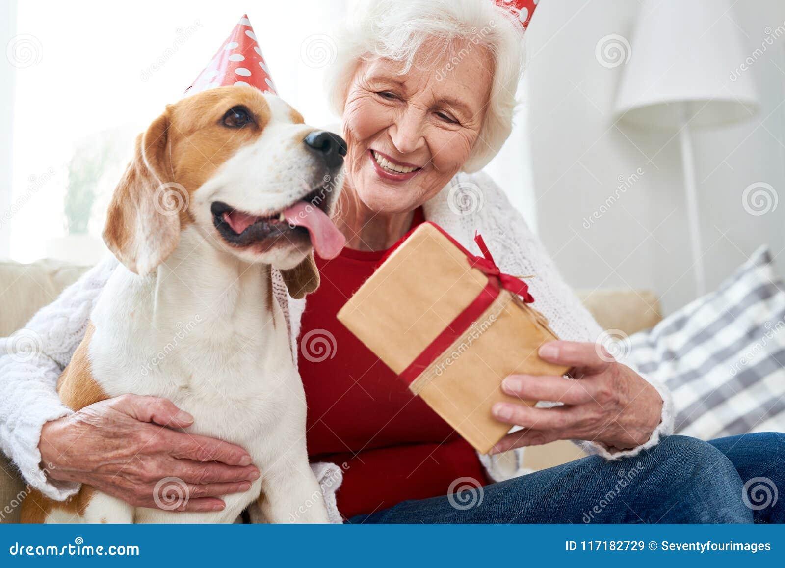 Gelukkige Hogere Vrouw Het Vieren Verjaardag Met Hond Stock