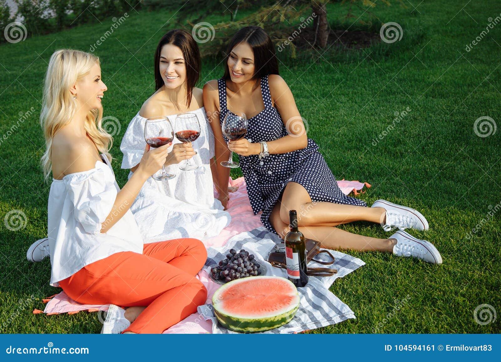Gelukkige jonge vrouwenvrienden die een picknick in het land hebben