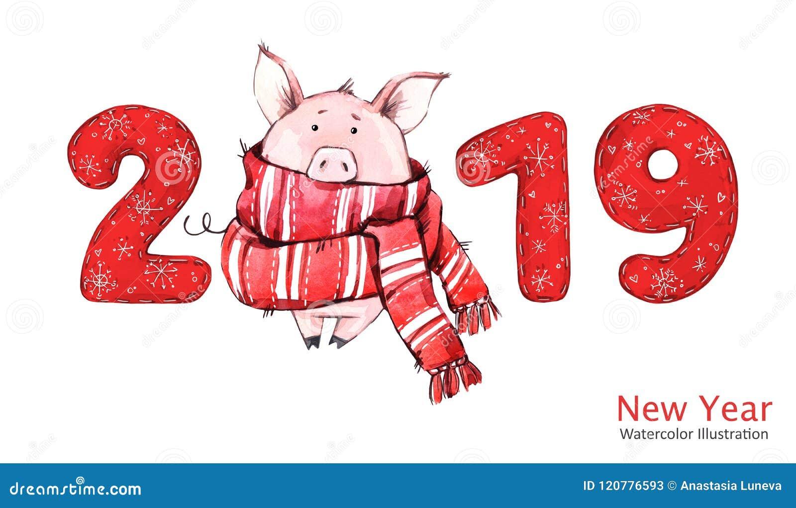 2019 Gelukkige Nieuwjaarbanner Leuk varken in de wintersjaal met aantallen De illustratie van de waterverf Symbool van de winterv