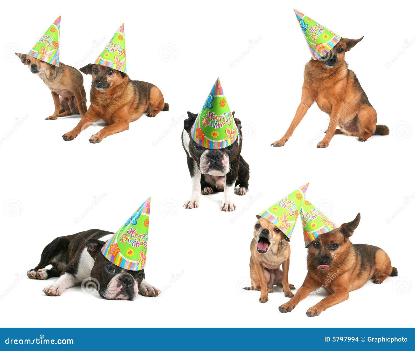 Gelukkige Verjaardag Stock Foto Afbeelding Bestaande Uit