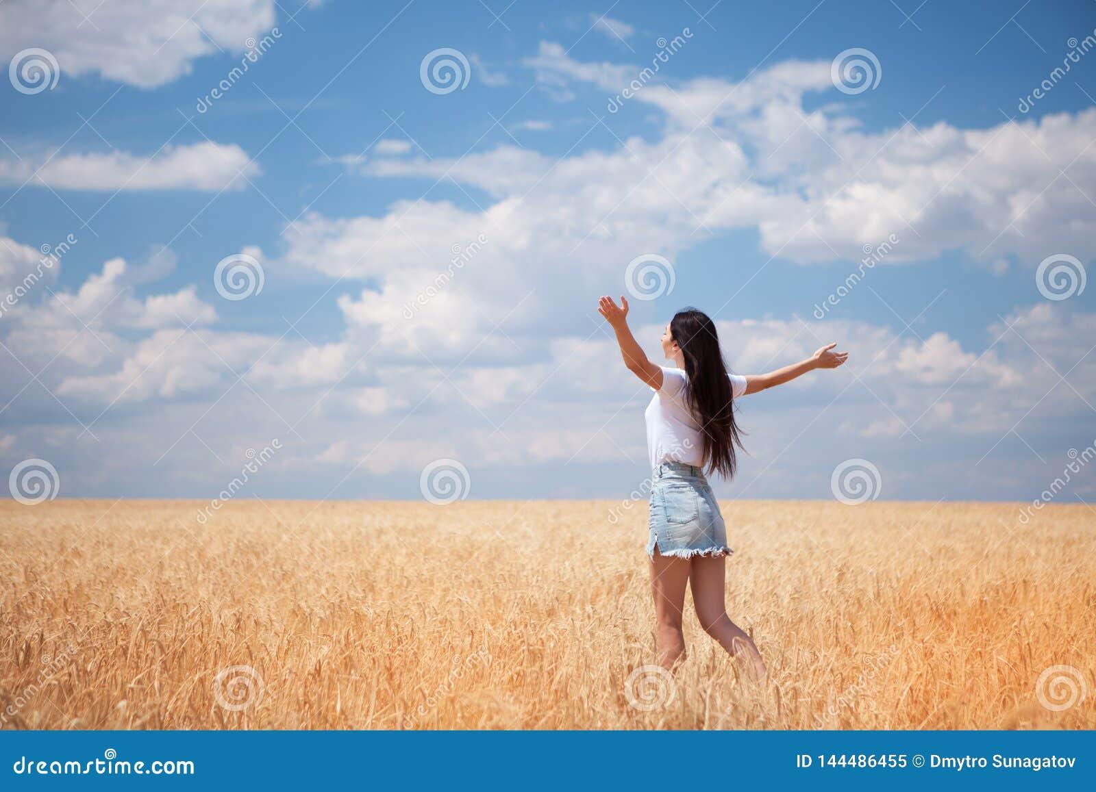 Gelukkige vrouw die van het leven op de schoonheid van de gebiedsaard, de blauwe hemel en het gebied met gouden tarwe genieten Op