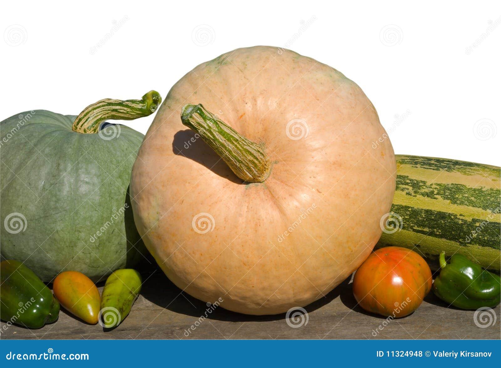 Gemüse 28