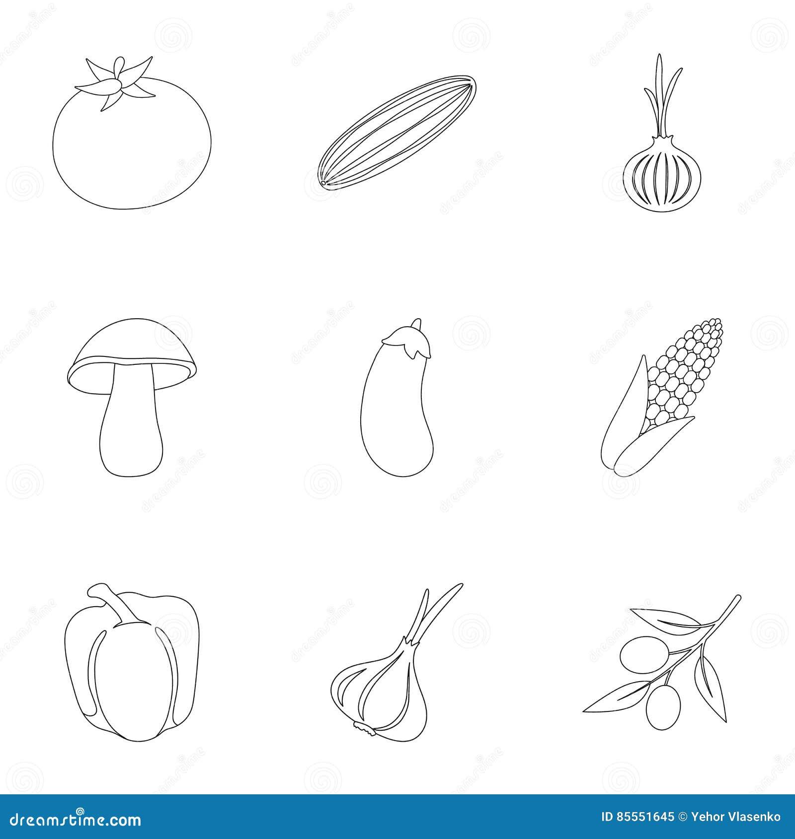 Gemüse stellte Ikonen in der Entwurfsart ein Große Sammlung der Gemüseillustration