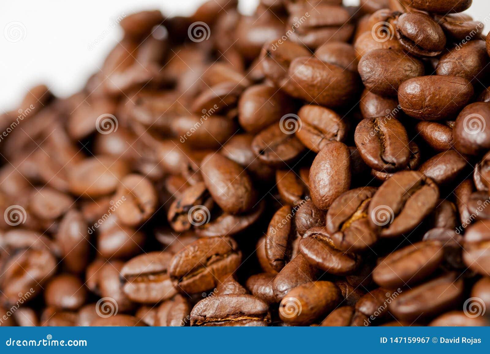 Gemahlen frisch Kaffeebohnen gebraten mit Früchten der Kaffeeanlage, auf weißem Hintergrund
