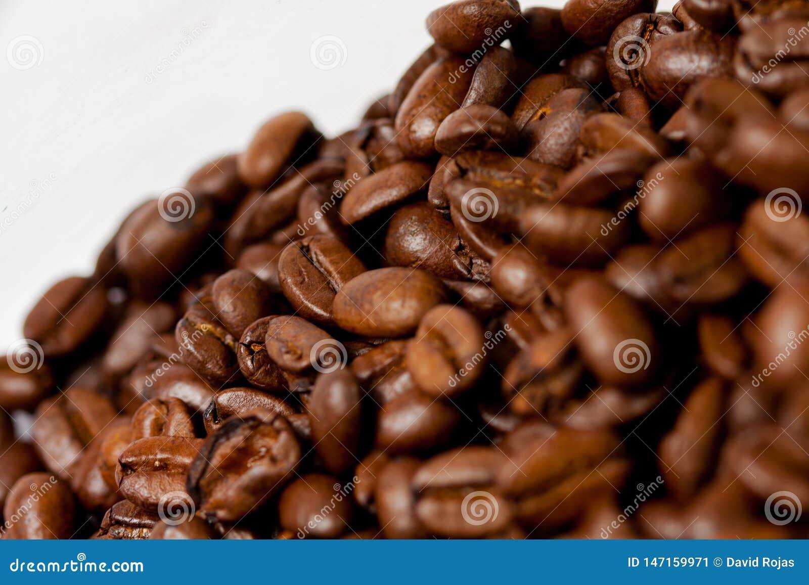 Gemahlen frisch Kaffeebohnen gebraten mit Fr?chten der Kaffeeanlage, auf wei?em Hintergrund