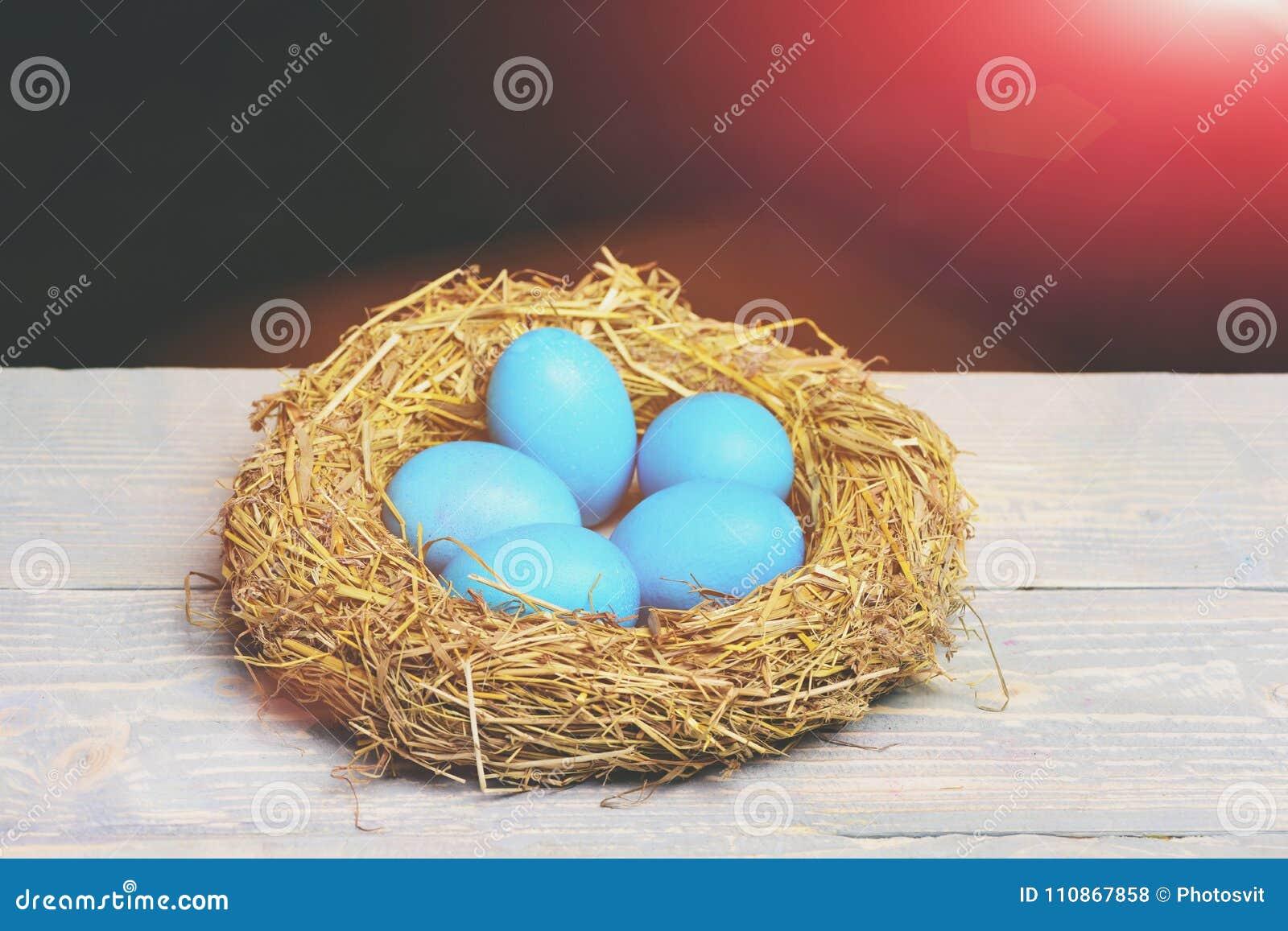 Gemalte Blaue Eier Ostern Im Vogel Nisten Auf Schwarzem Hintergrund
