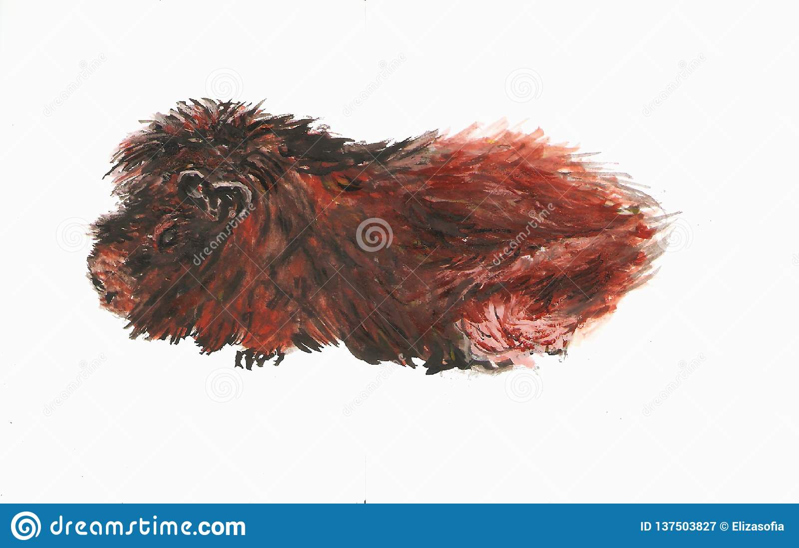 Gemaltes Meerschweinchen