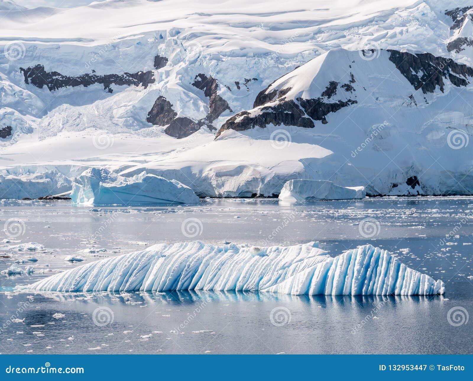Gemeißelter Eisberg des Winds und des Wassers, der in Andvord-Bucht nahe Nek treibt