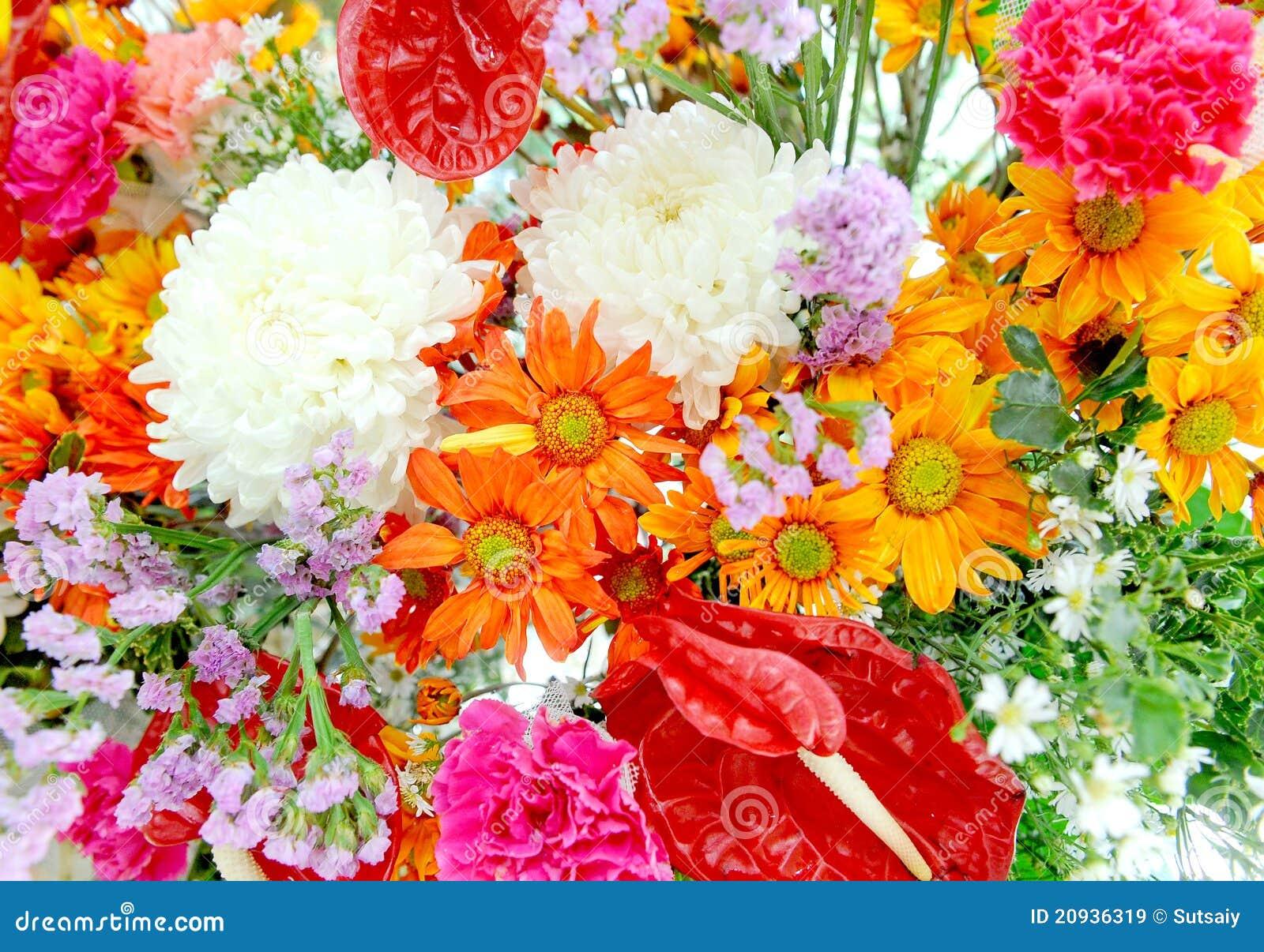 Gemengde bloemen in kleurrijk