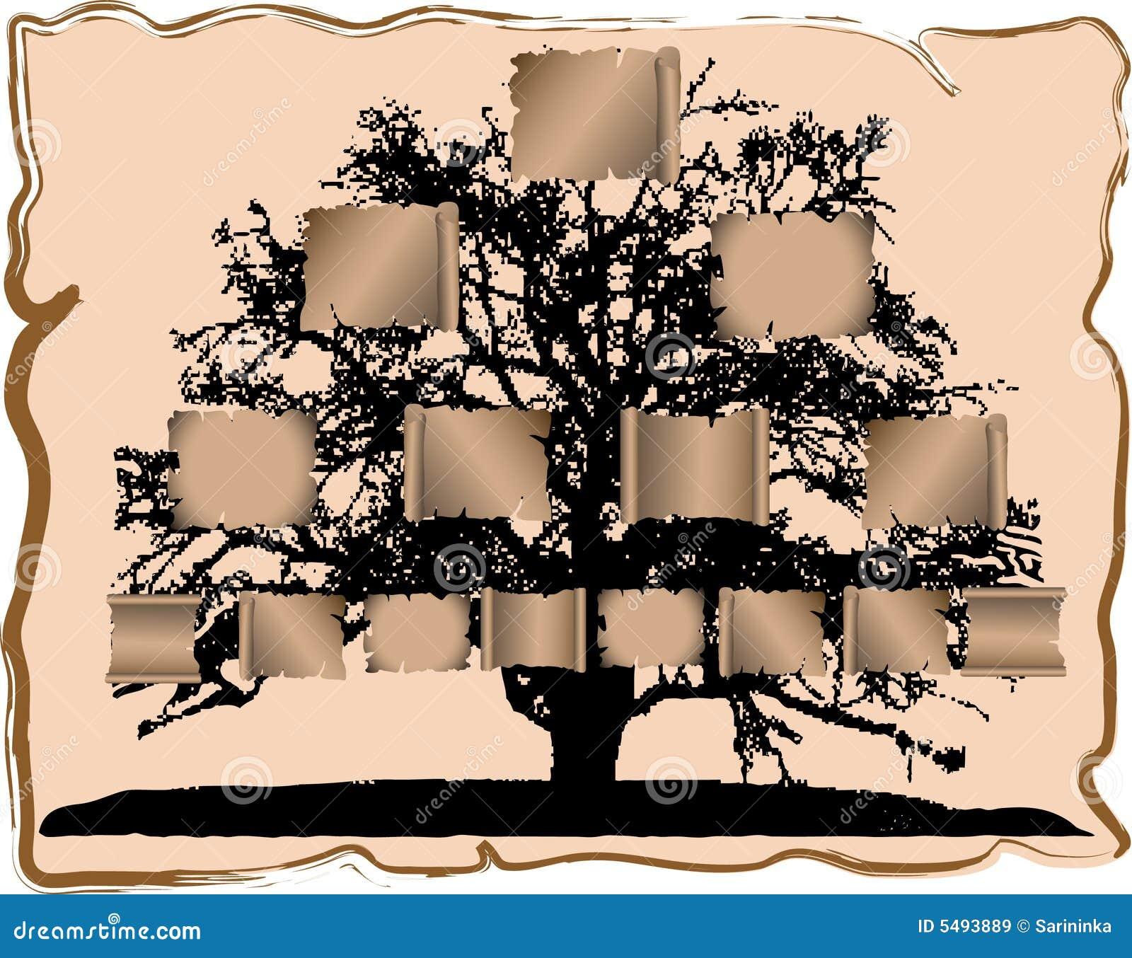 Genealogische boom