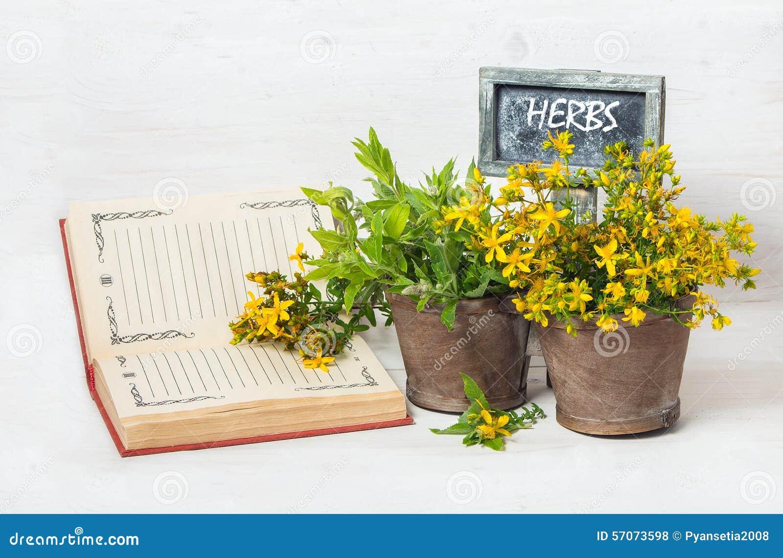Geneeskrachtige kruiden in de pot en de tablet voor tekst