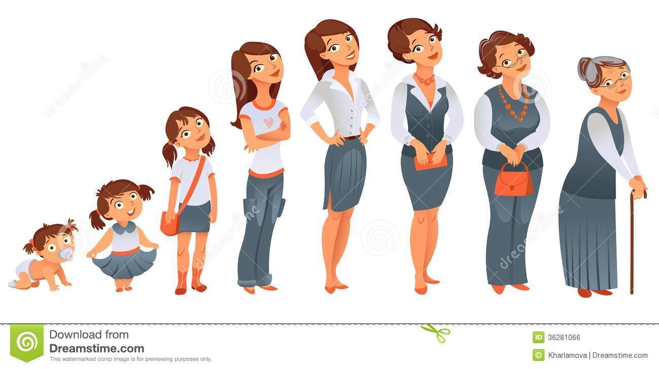 generations woman. stages of development royalty free stock image, Muscles