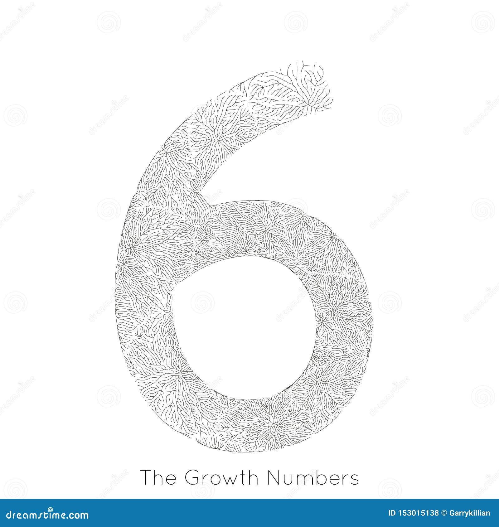 Generativ filialtillväxt nummer 6 för vektor Lav som den organiska strukturen med form för åderformnummer Monocrome
