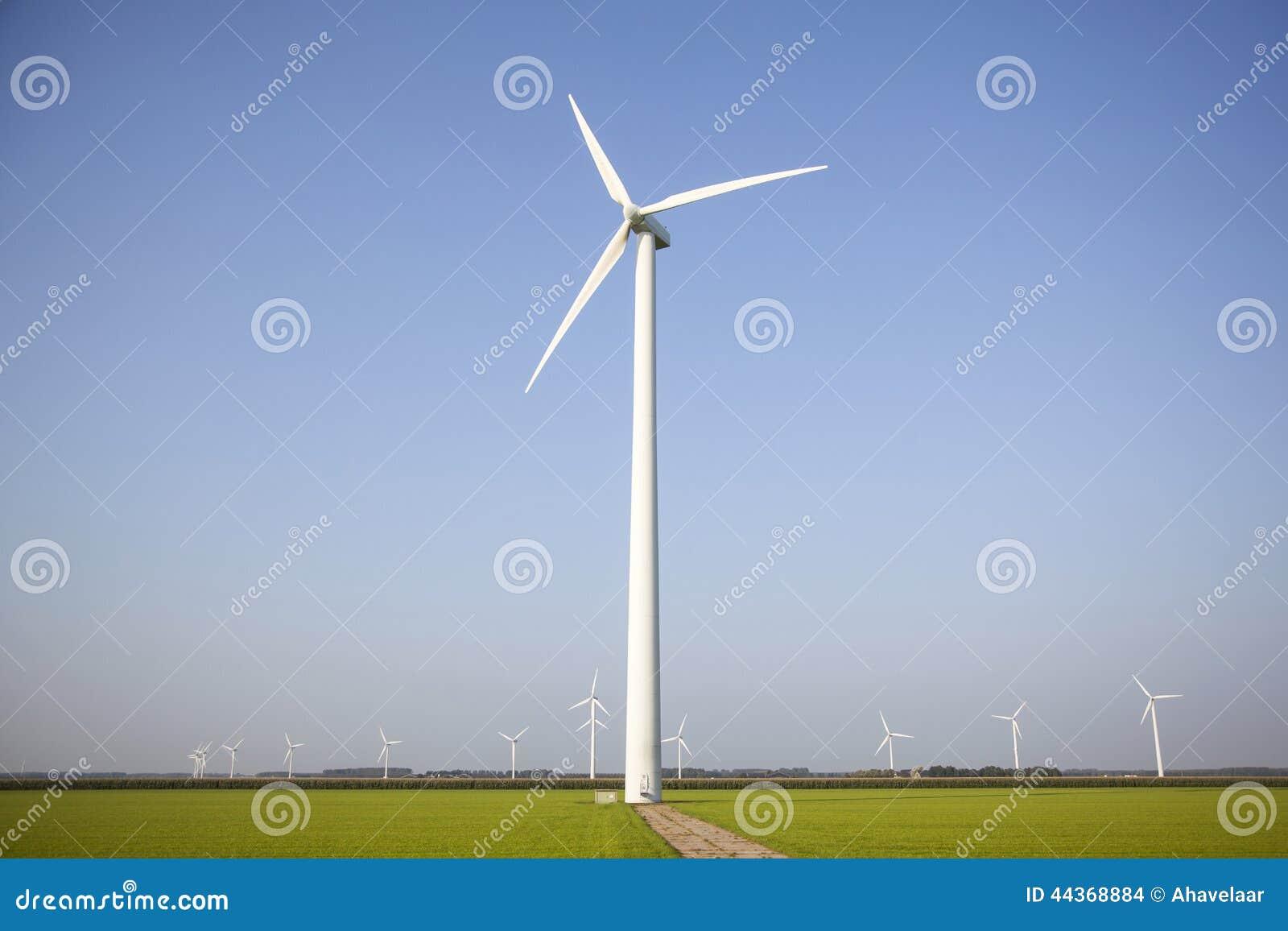 Generatori eolici nei campi verdi nei Paesi Bassi